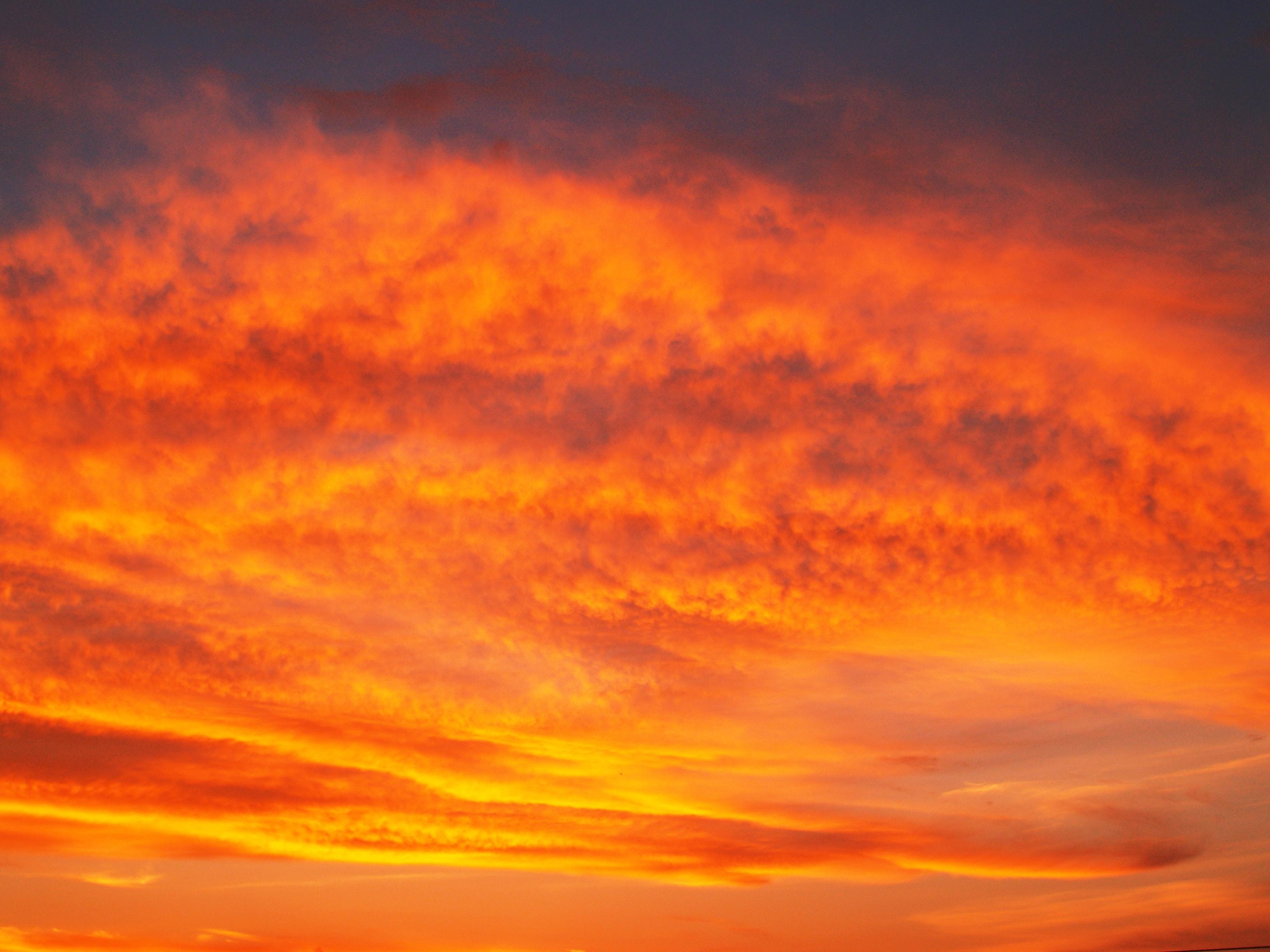 Картинки оранжевое небо