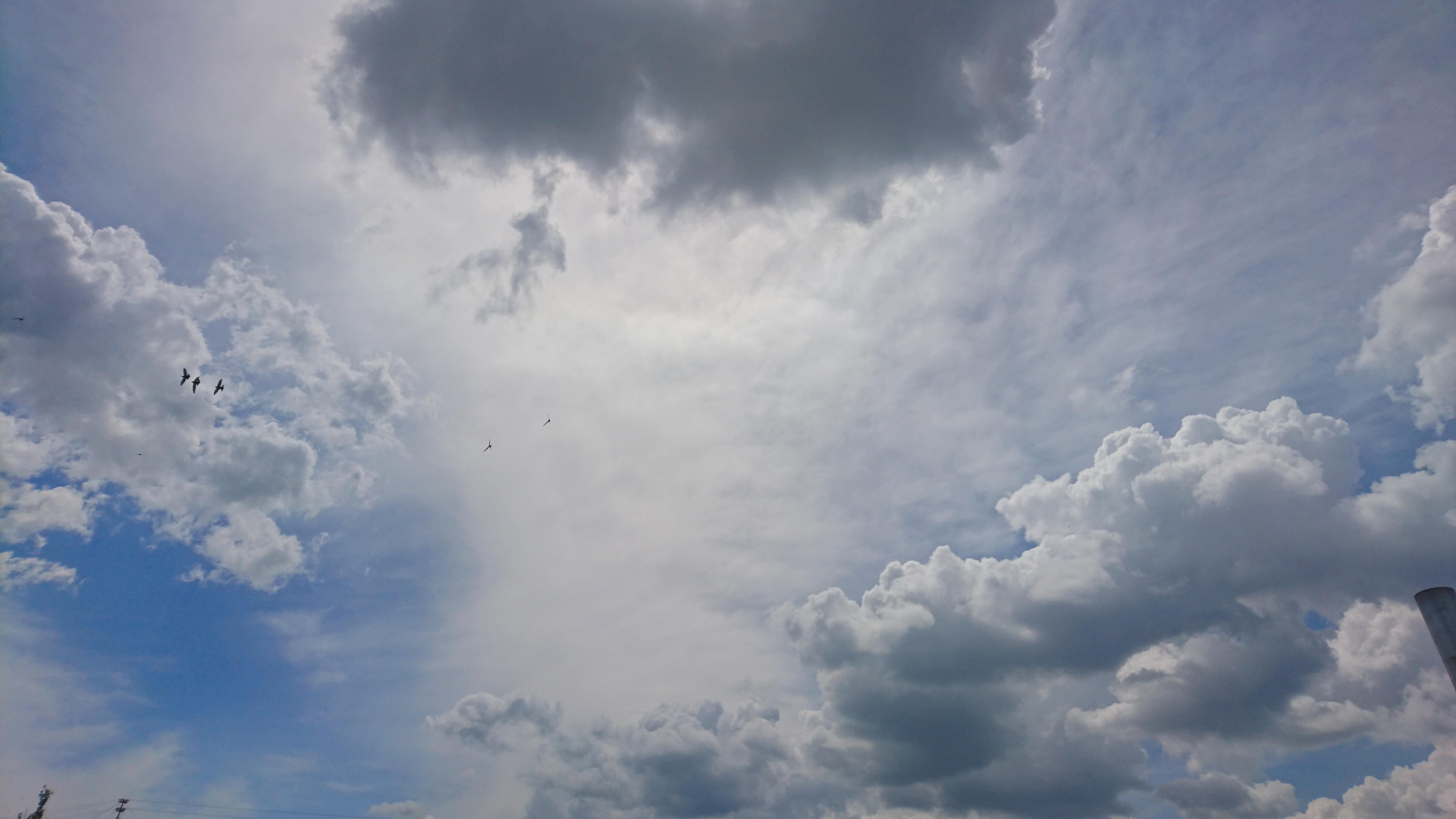 Kostenlose foto : Himmel, Wolken, Sonne, Vögel, Wolke ...