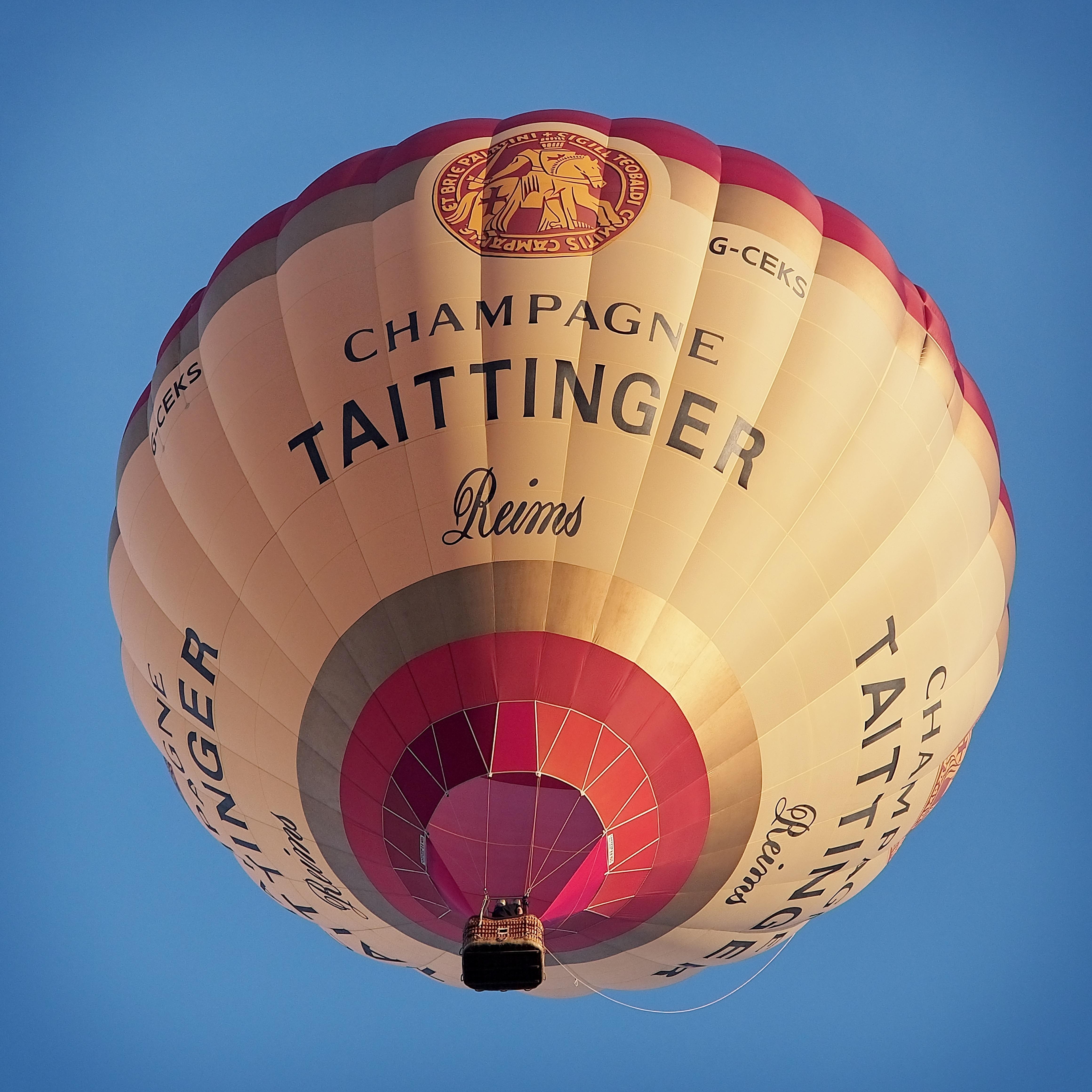 Free Images : sky, grape, wine, hot air balloon, aircraft, high
