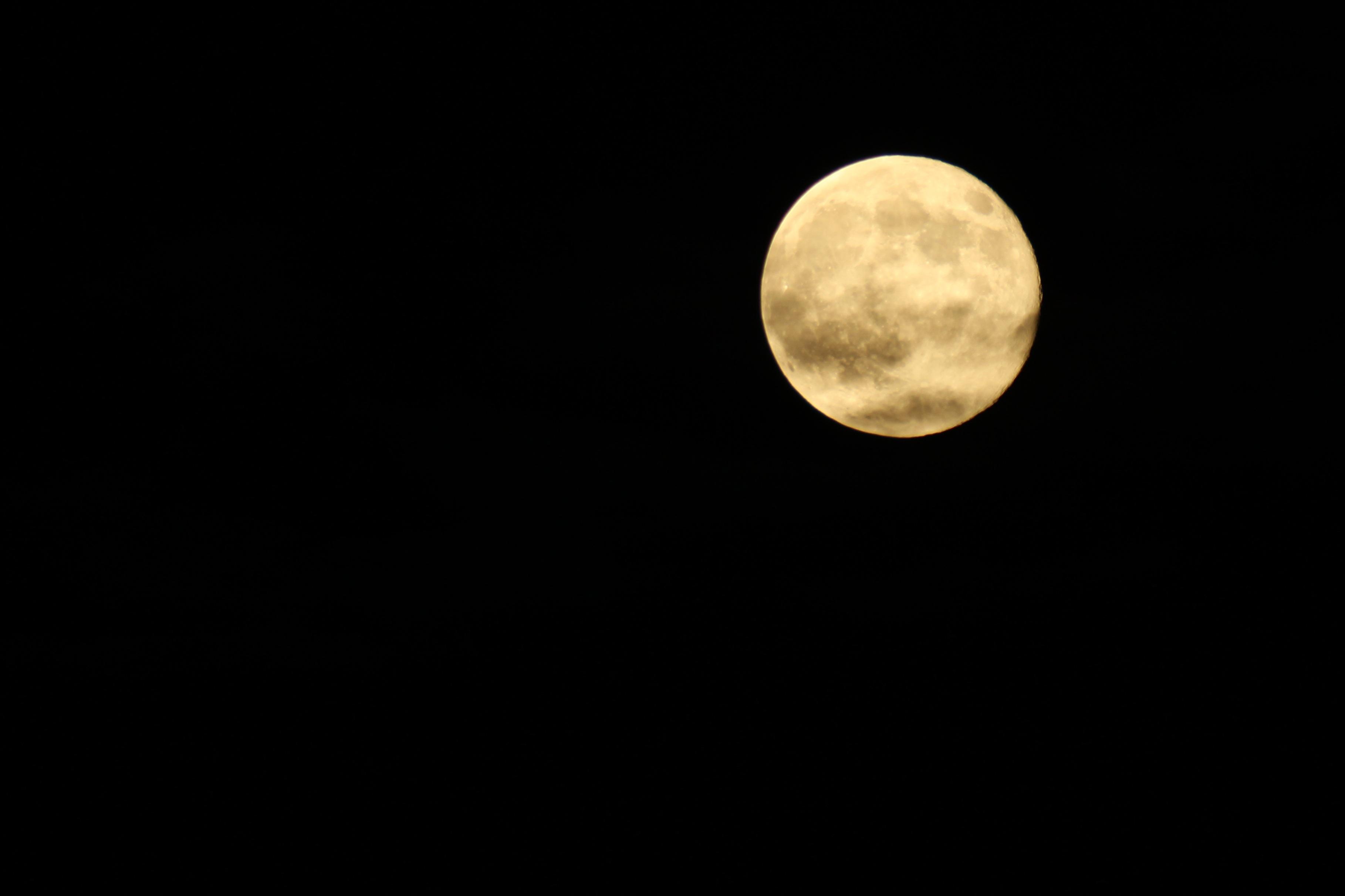 Free Images : sky, night, atmosphere, dark, halloween, full moon ...