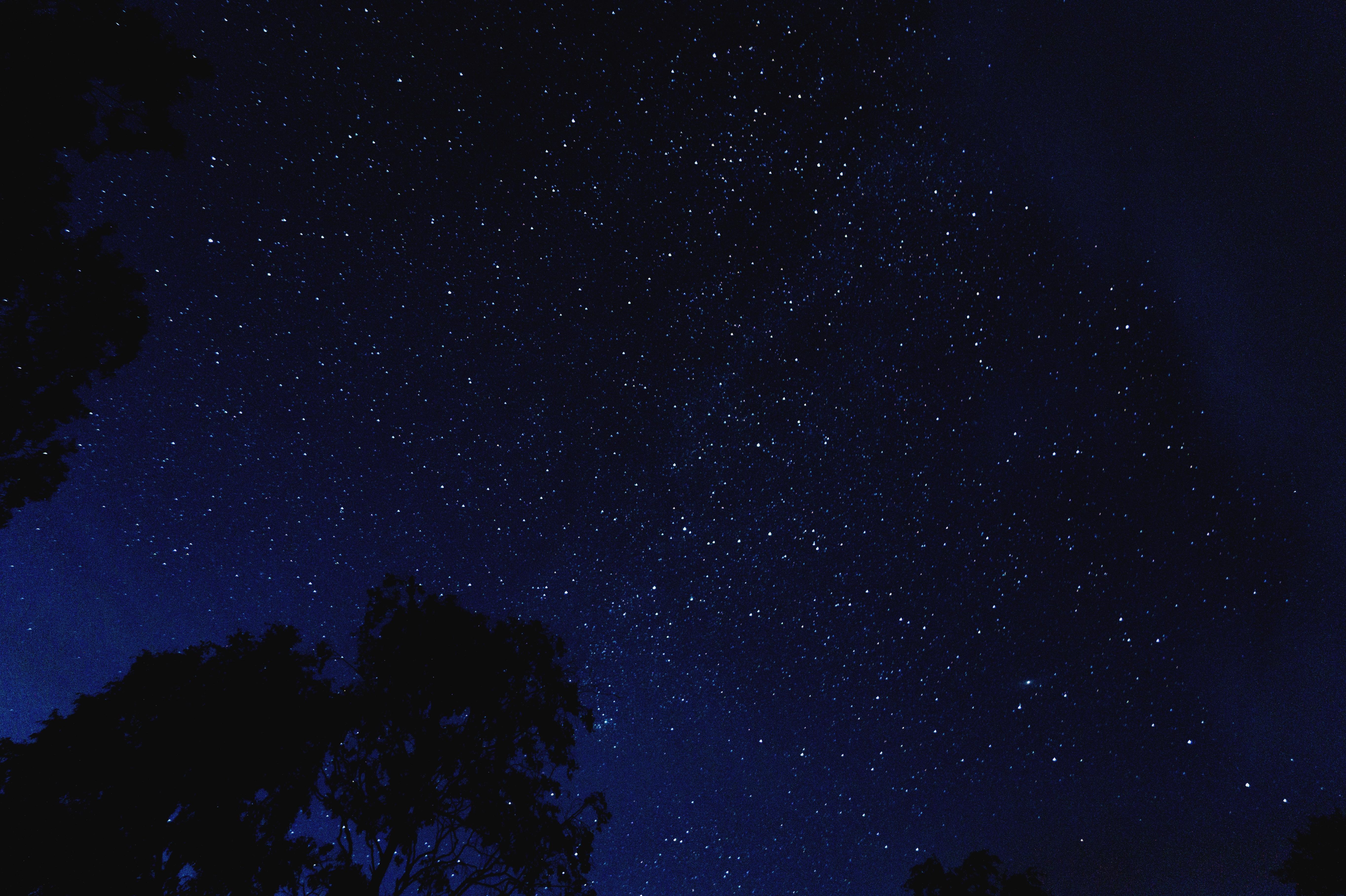 Free Images : Night, Atmosphere, Dark, Idyllic, Evening