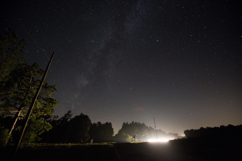 зелень ночное небо реальное фото целом, если оттепели