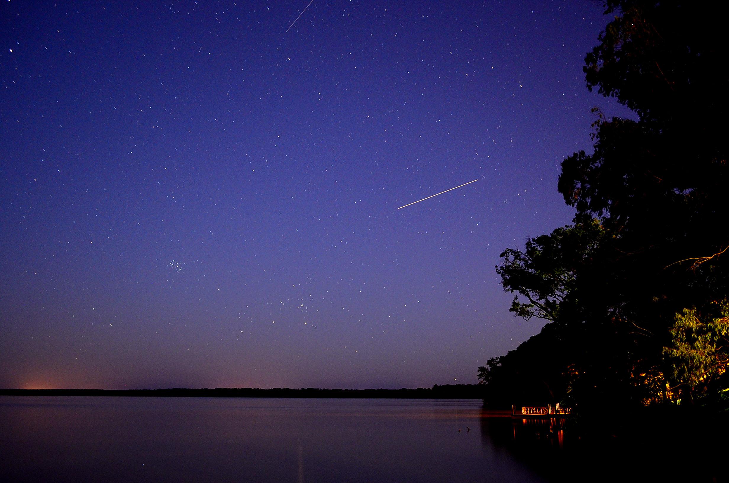 фото звезды на небе ночью собаки
