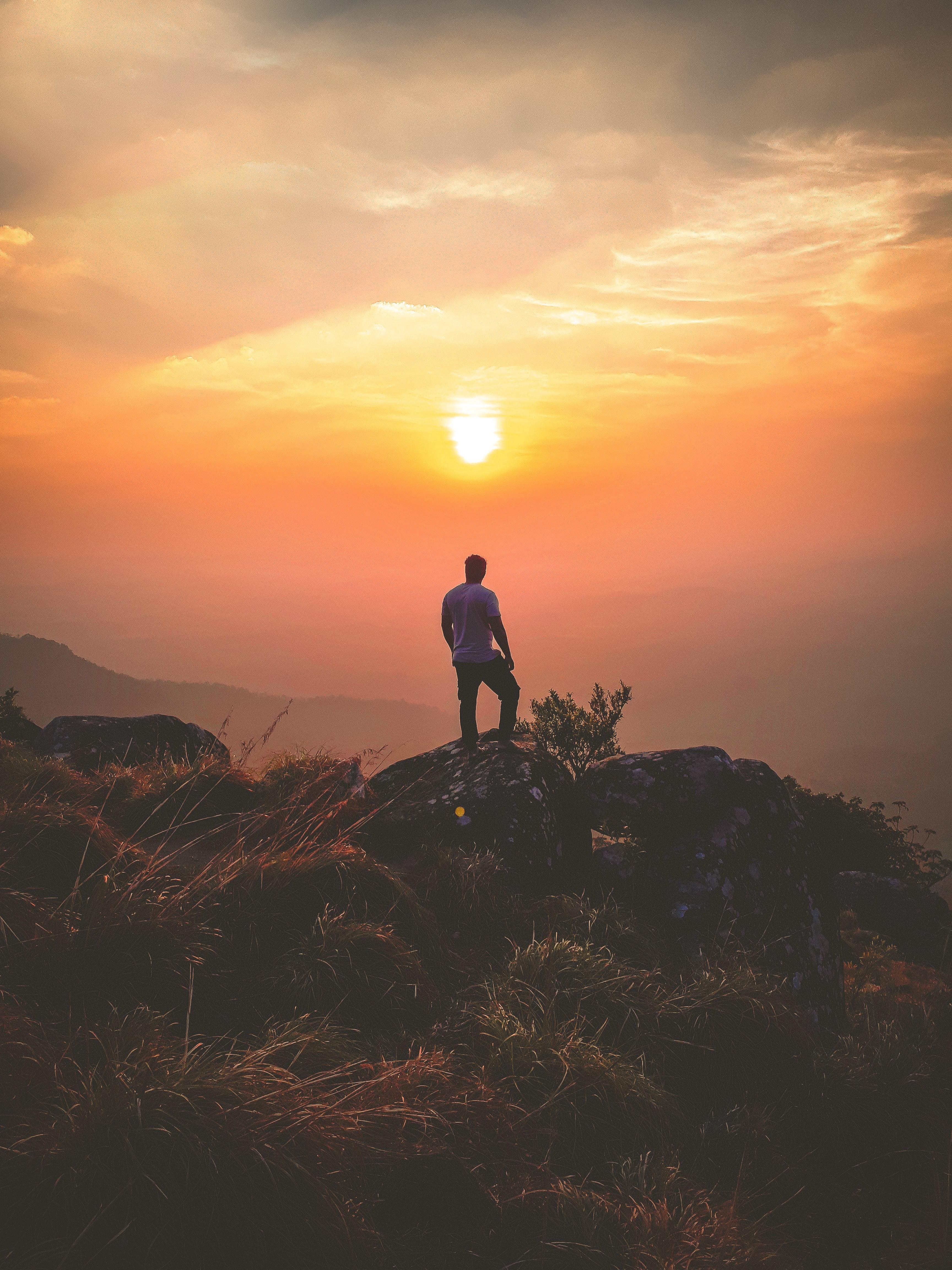 телятины парень стоит на закате солнца картинки брак