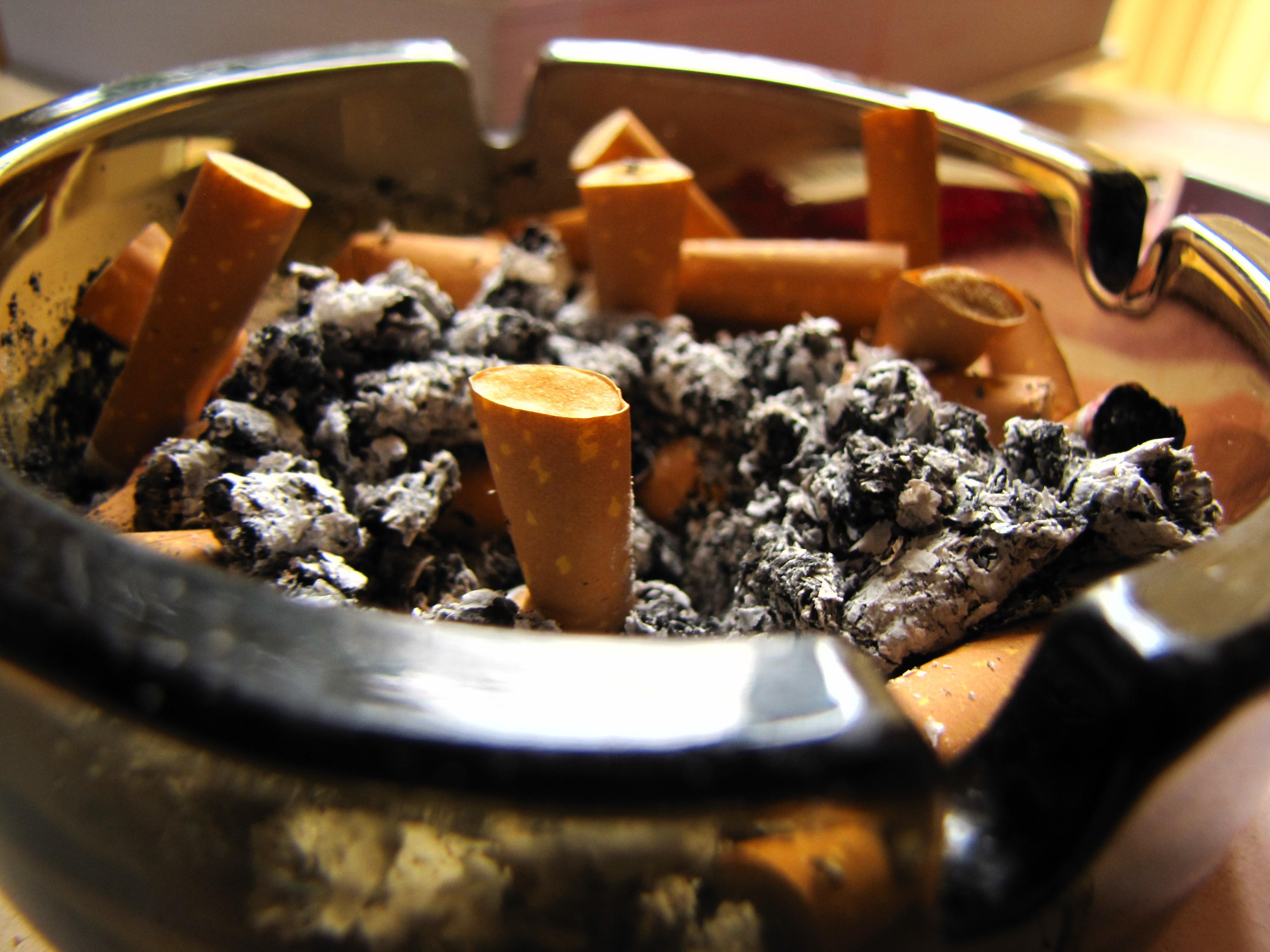 free images : smoke, smoking, dish, meal, produce, ash, chocolate