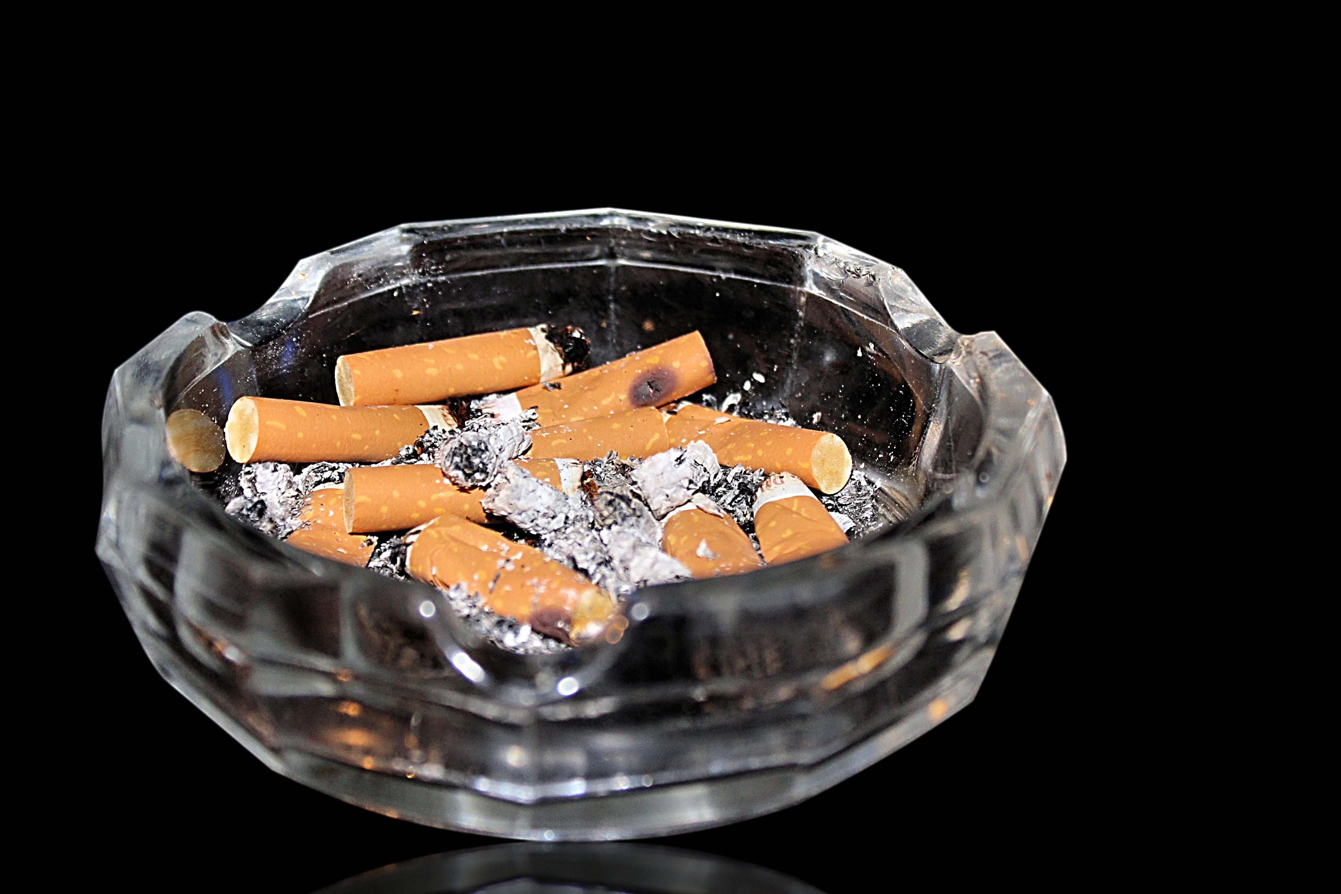 Kouření flóry