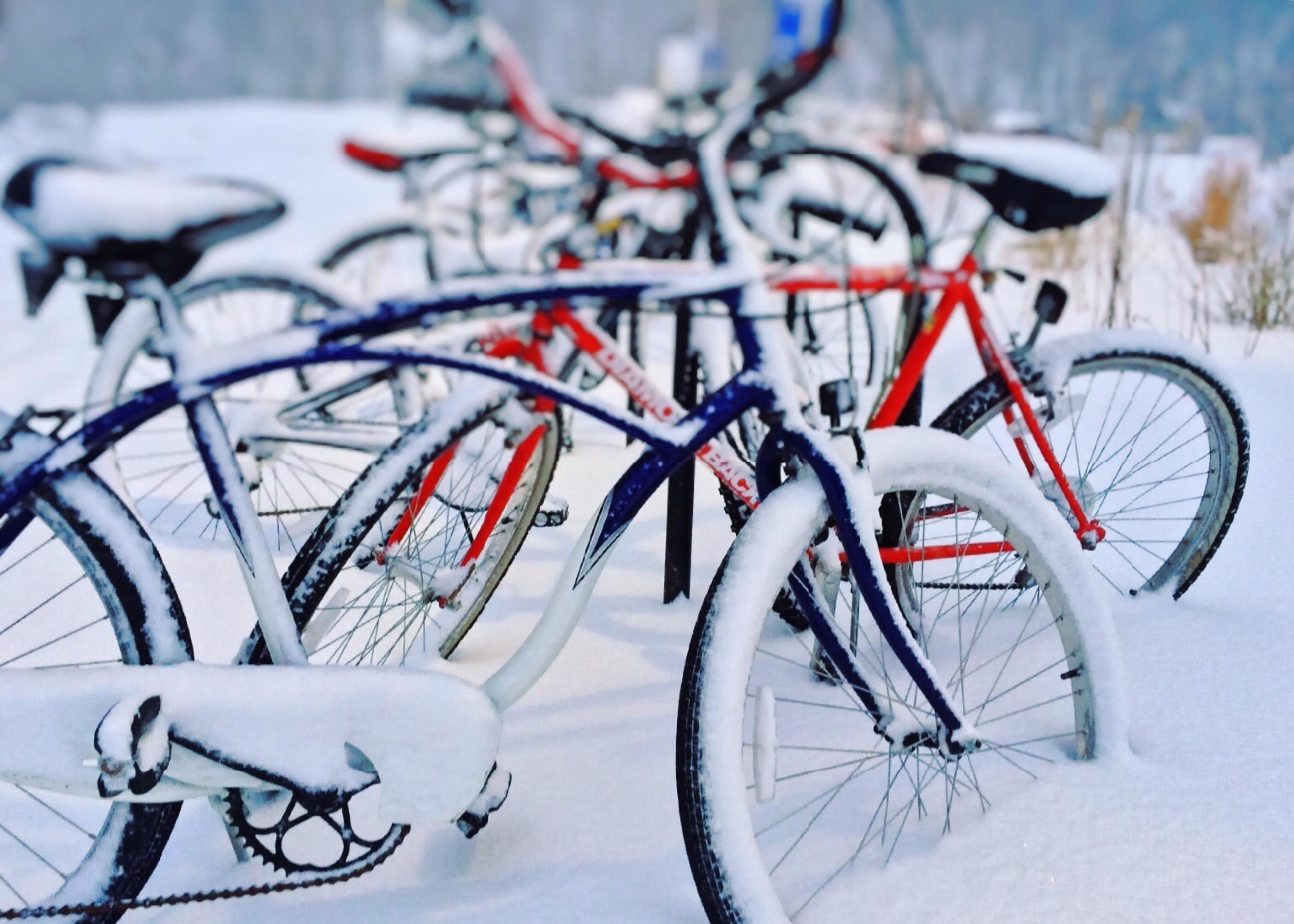 гардеробе каждой картинка велосипед и зима модель пригодится