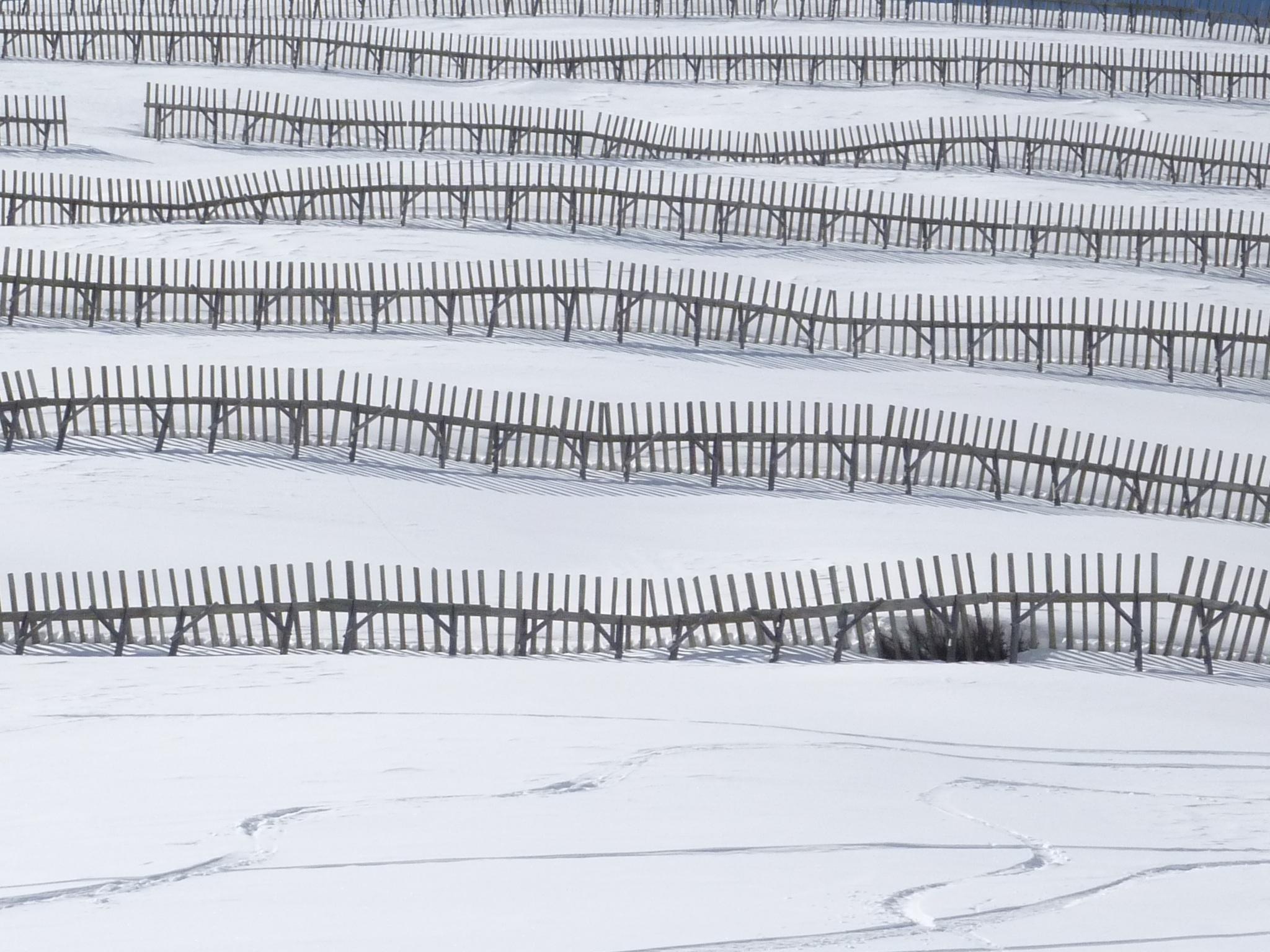 Kostenlose foto Schnee kalt Winter Struktur Weiß Linie