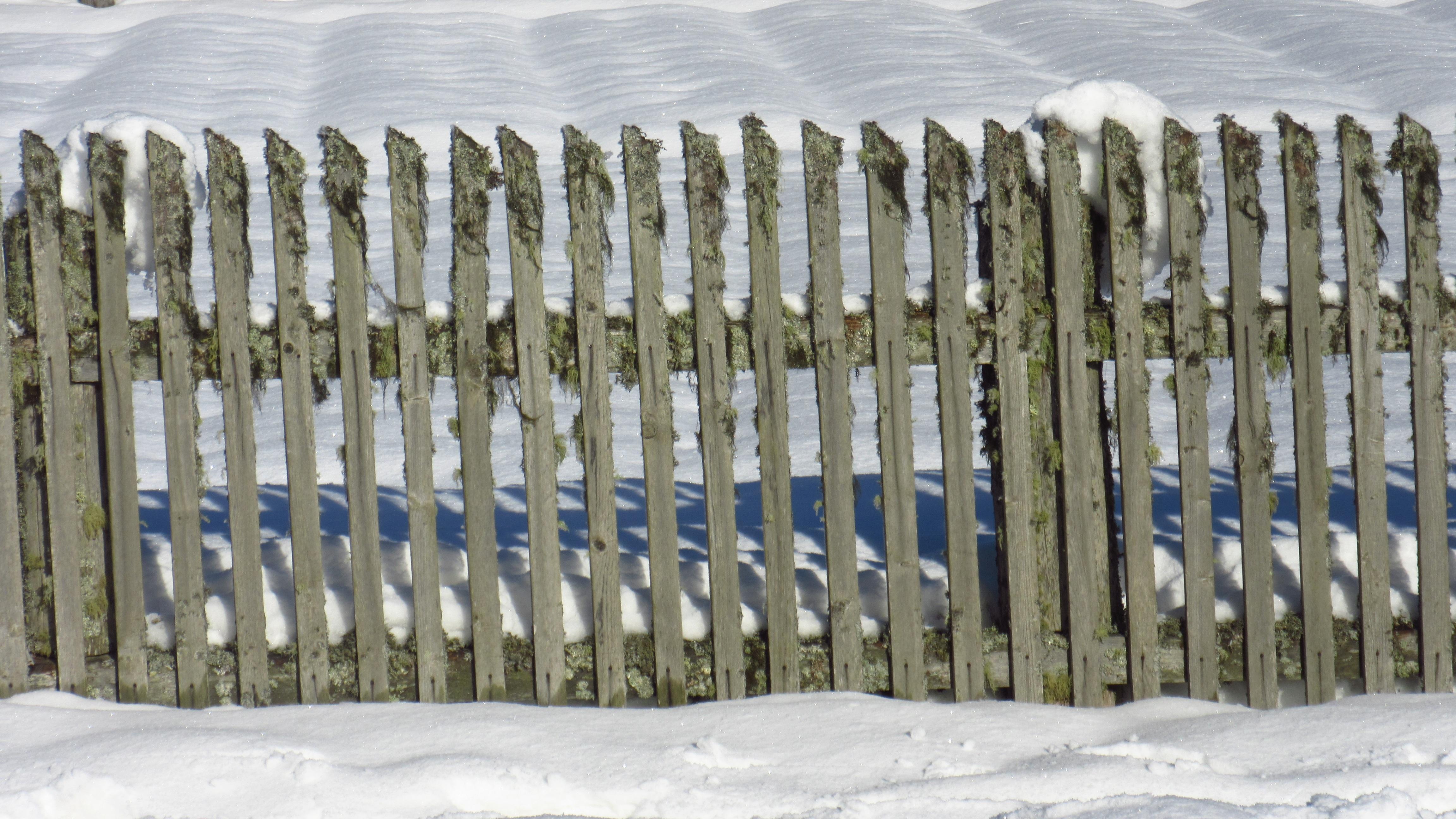 Kostenlose foto : Schnee, Zaun, Mauer, Möbel, Lattenzaun ...