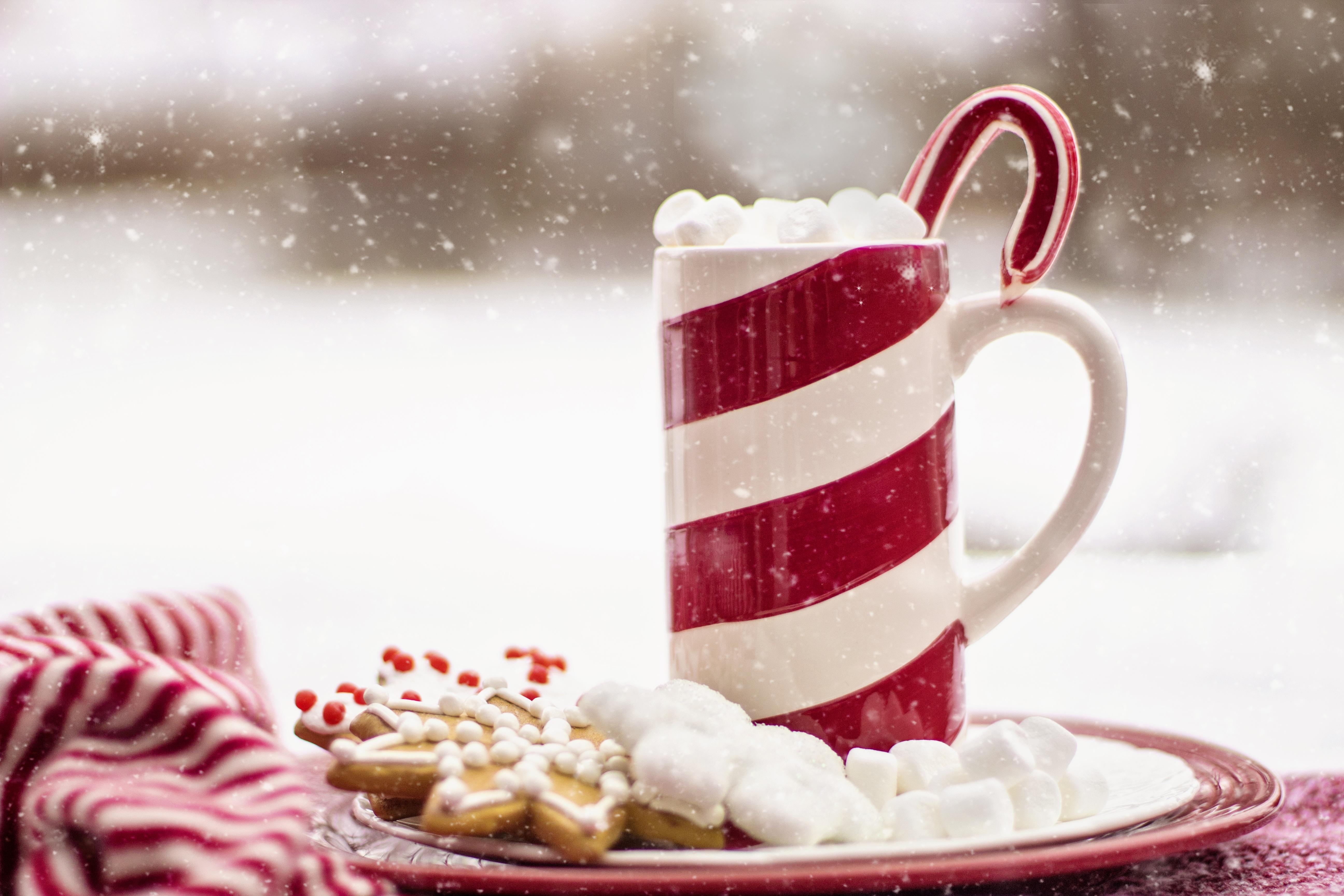 images gratuites neige chocolat chaud repas aliments. Black Bedroom Furniture Sets. Home Design Ideas