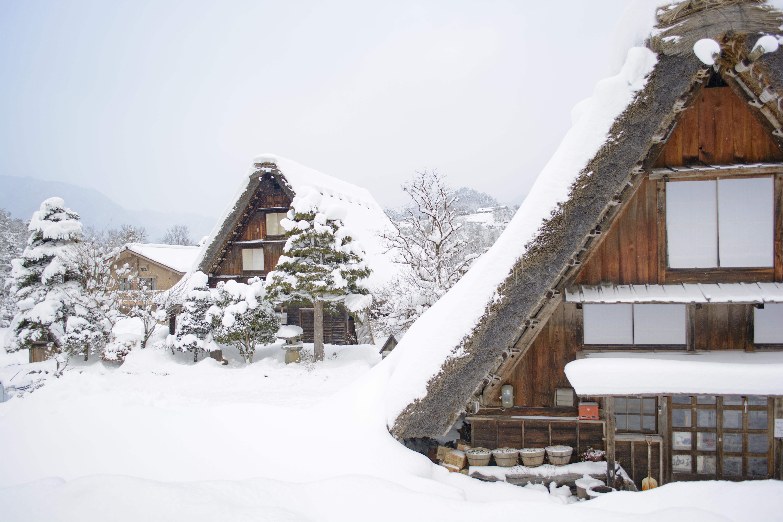 Ingyenes japán társkereső szolgáltatás