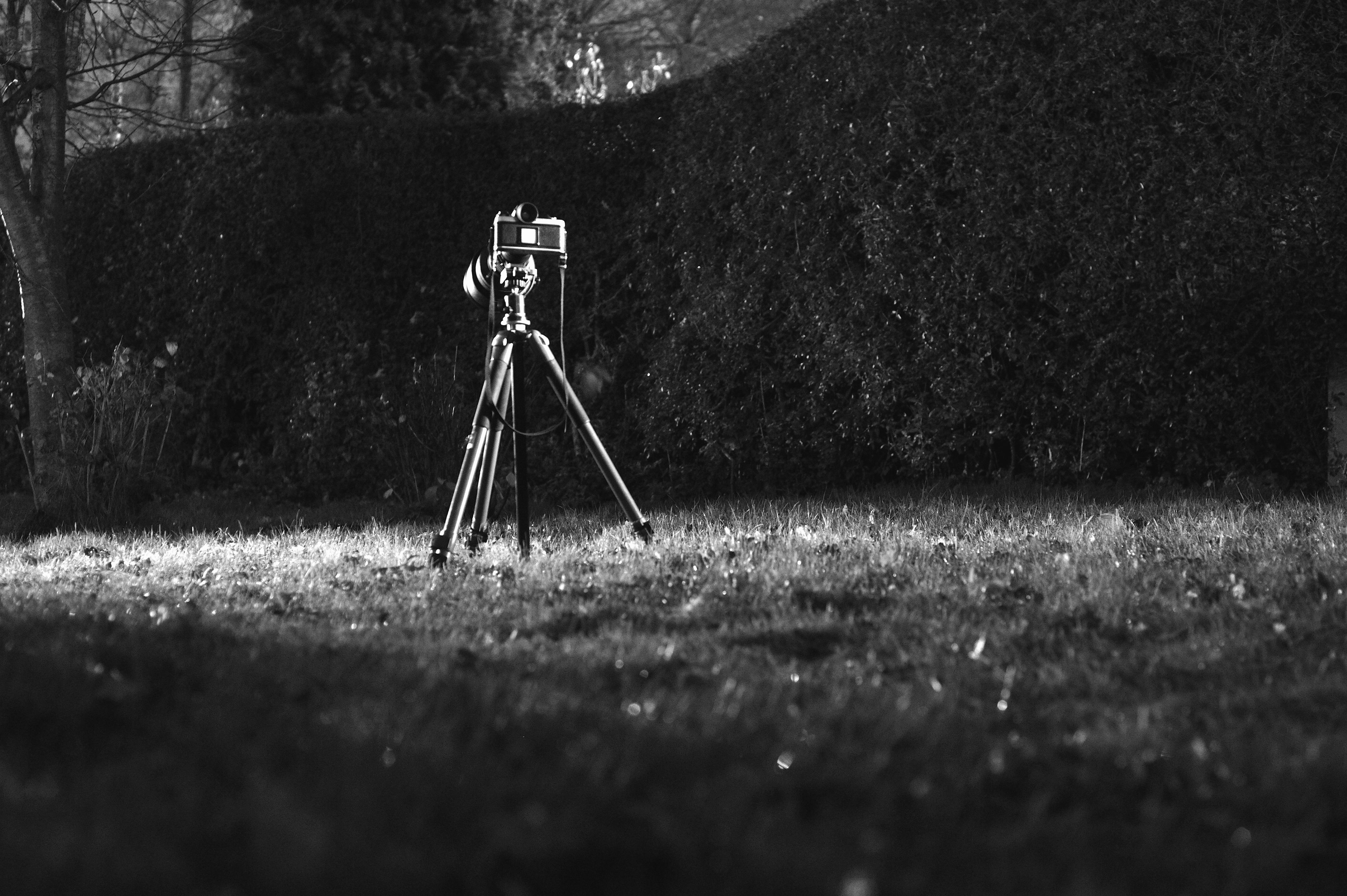 Snow light black and white white camera photography vintage sunlight film shadow darkness black monochrome tripod