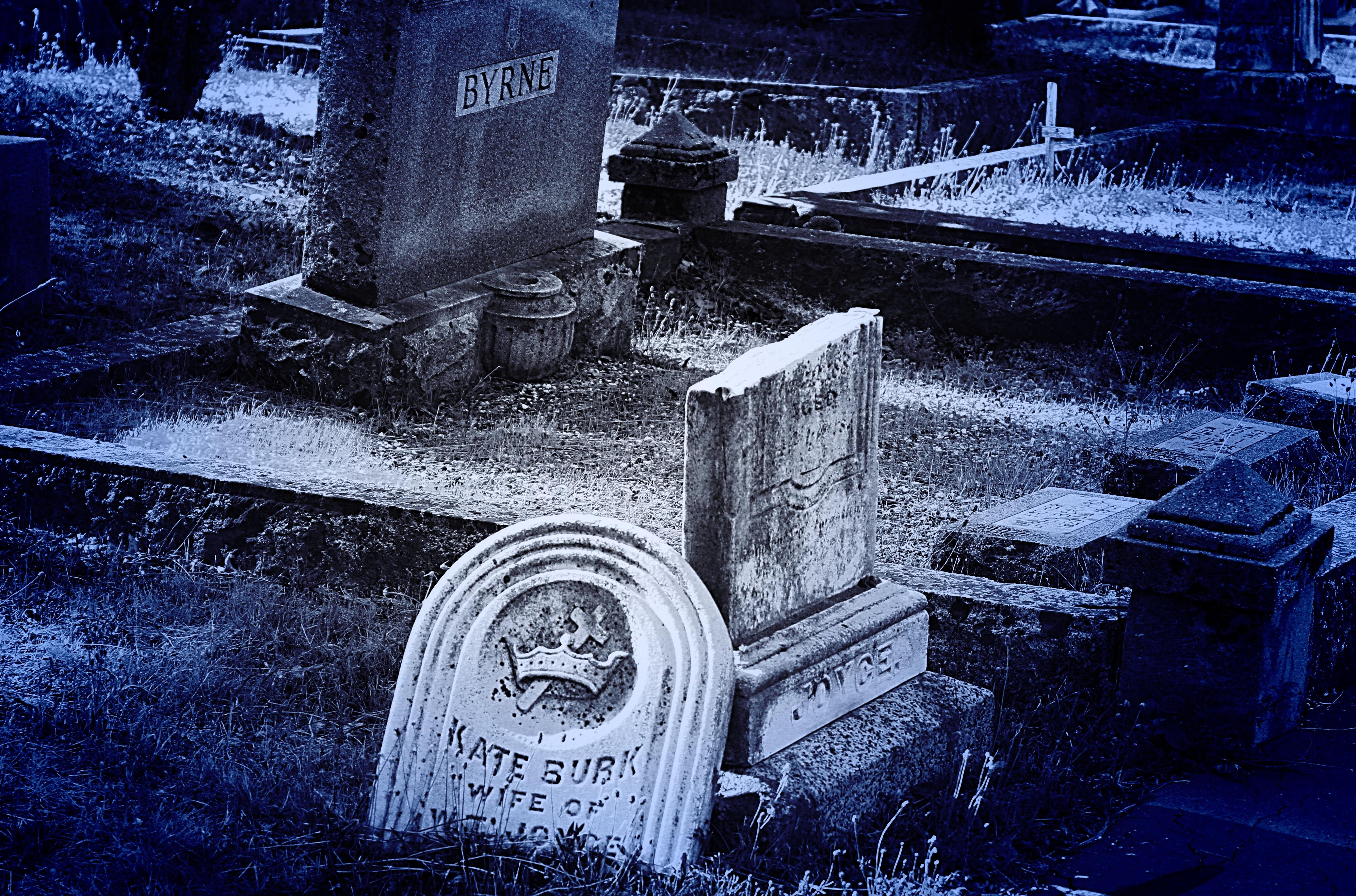 видеть во сне свою надгробную фотографию предлагает