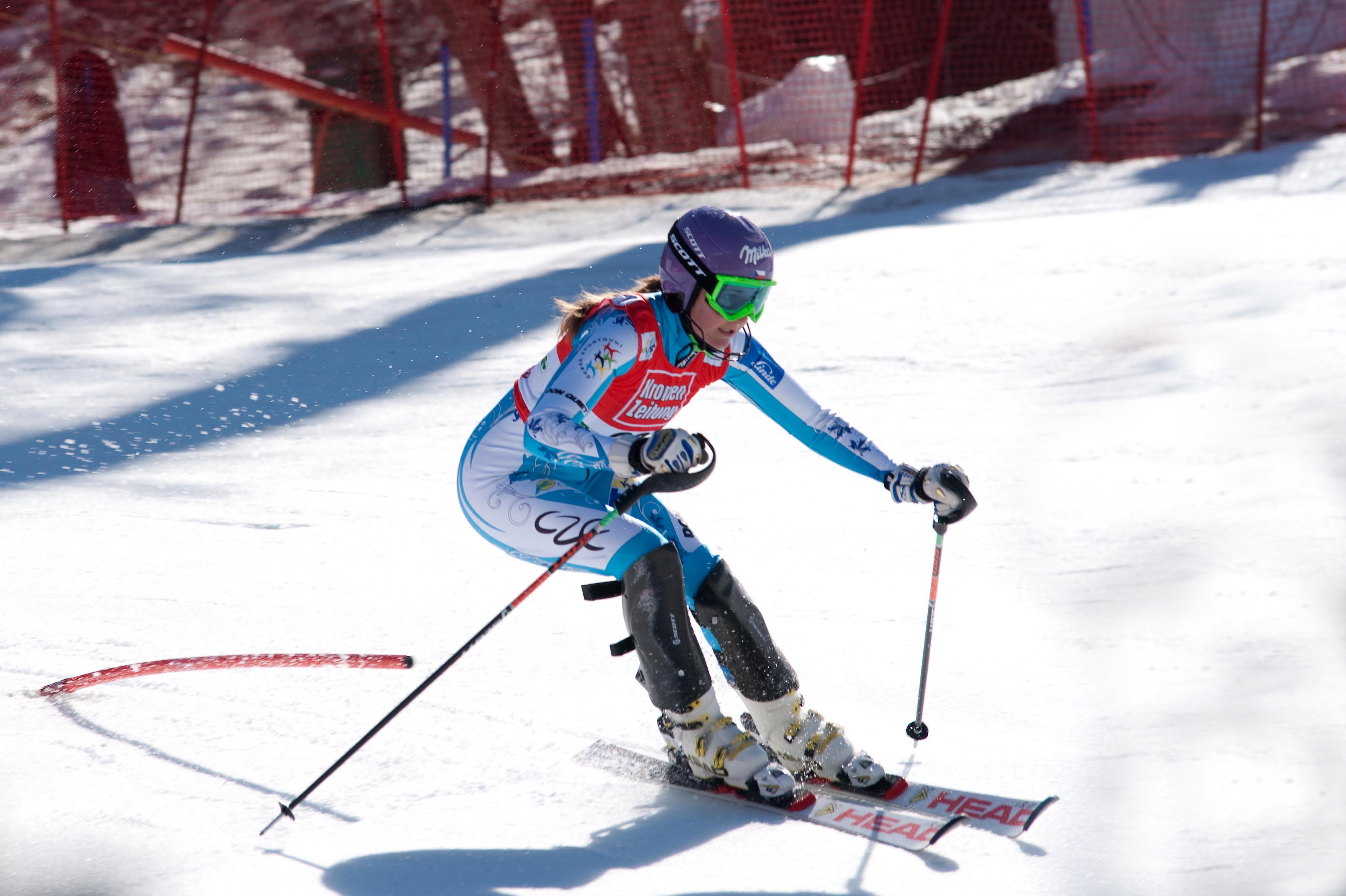 заведении лыжи как вид спорта картинки есть блик, должна