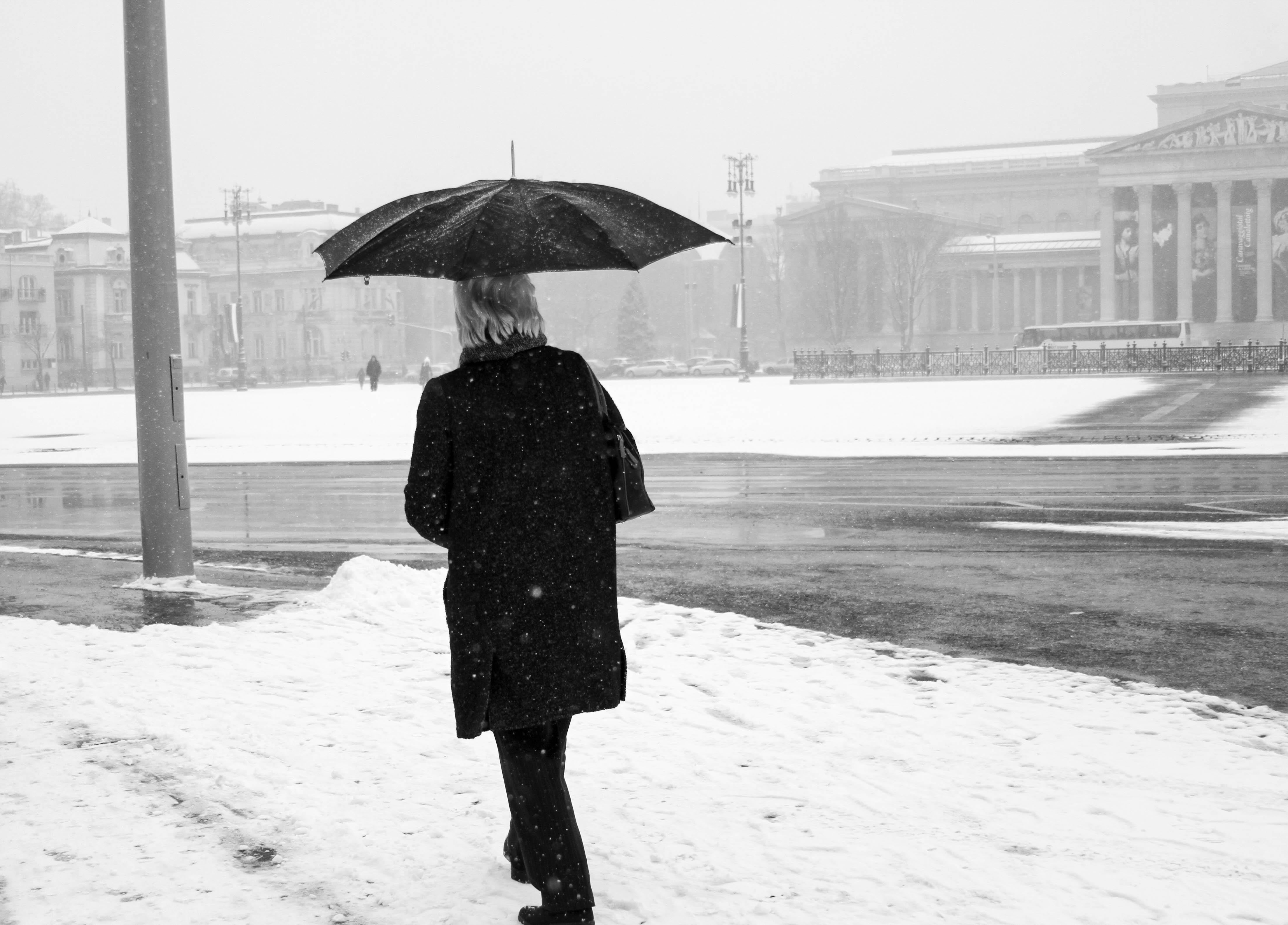 Gambar Musim Dingin Hitam Dan Putih Hujan Payung Cuaca