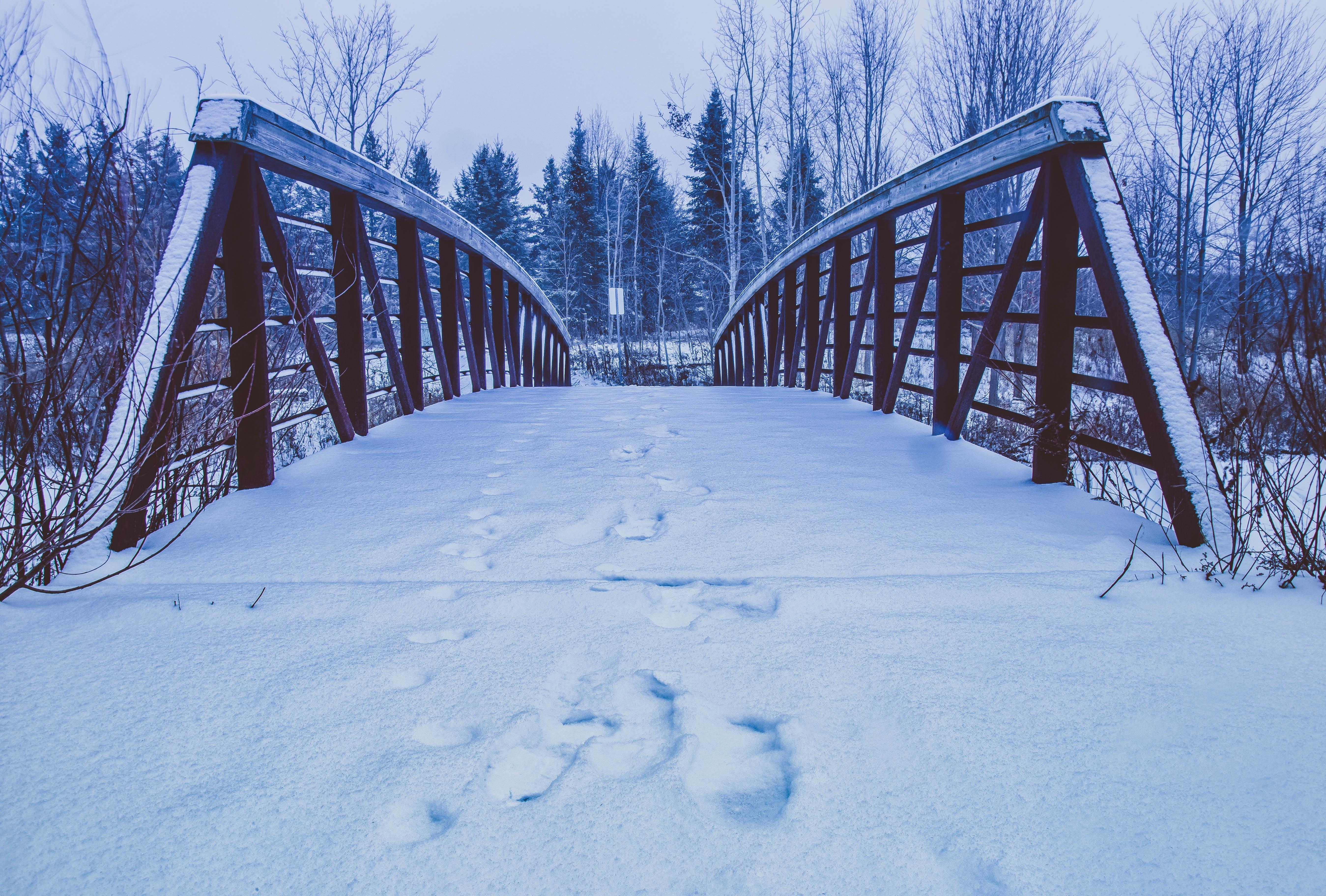 несколько зимняя мостовая картинки именно