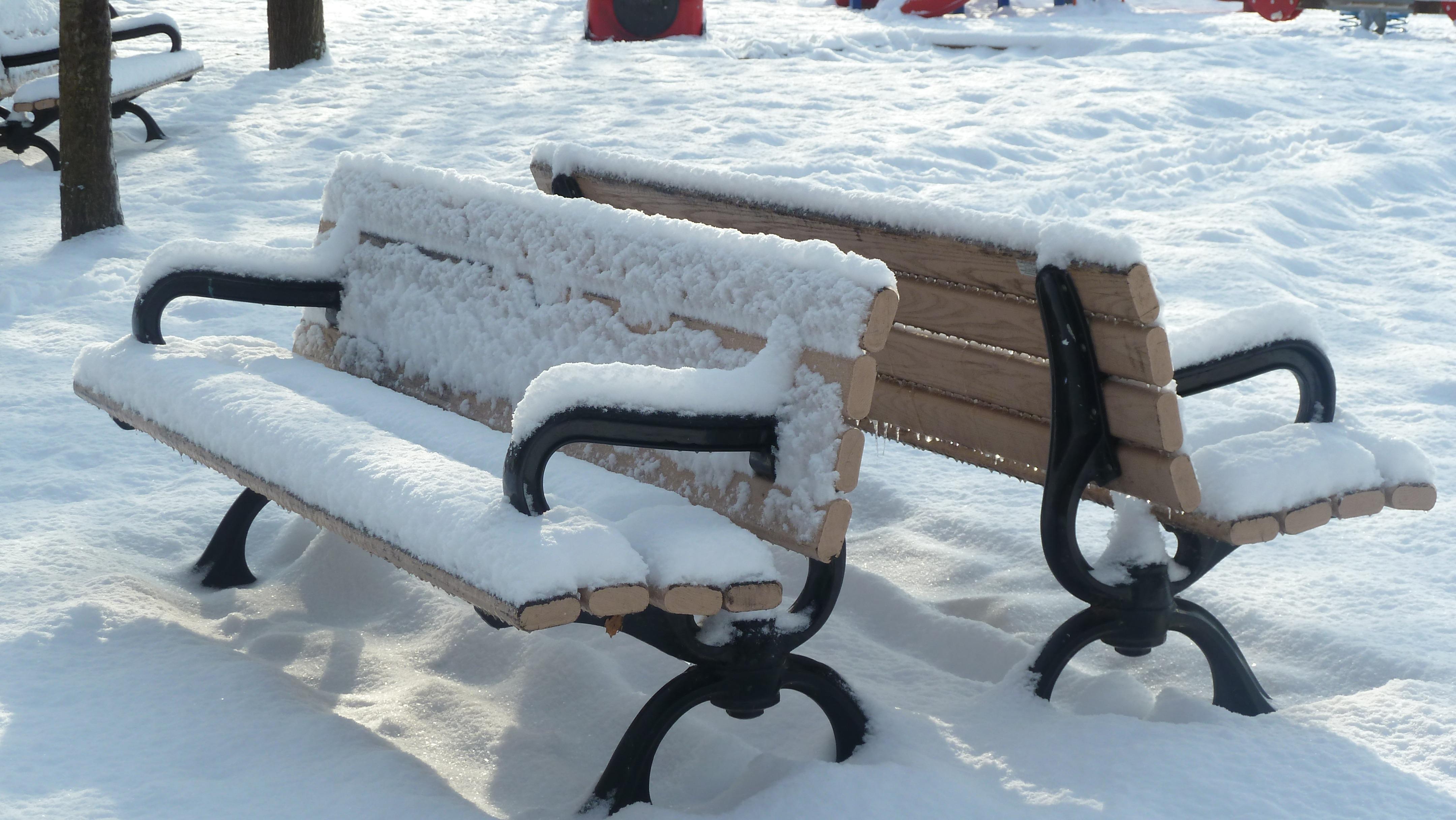 Fotos gratis : invierno, silla, parque, clima, vacío, mueble ...