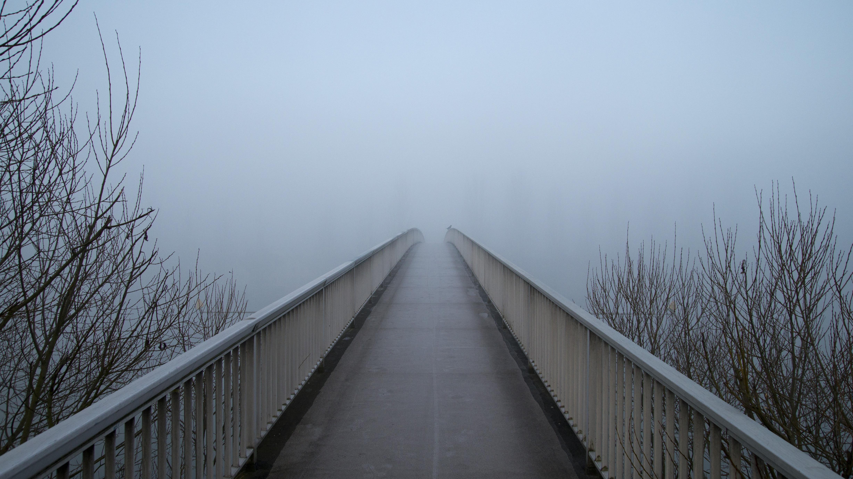 snow-winter-fog-mist-bridge-sunlight-morning-web-line-weather-empty-lonely-season-grey-freezing-atmospheric-phenomenon-982430.jpg