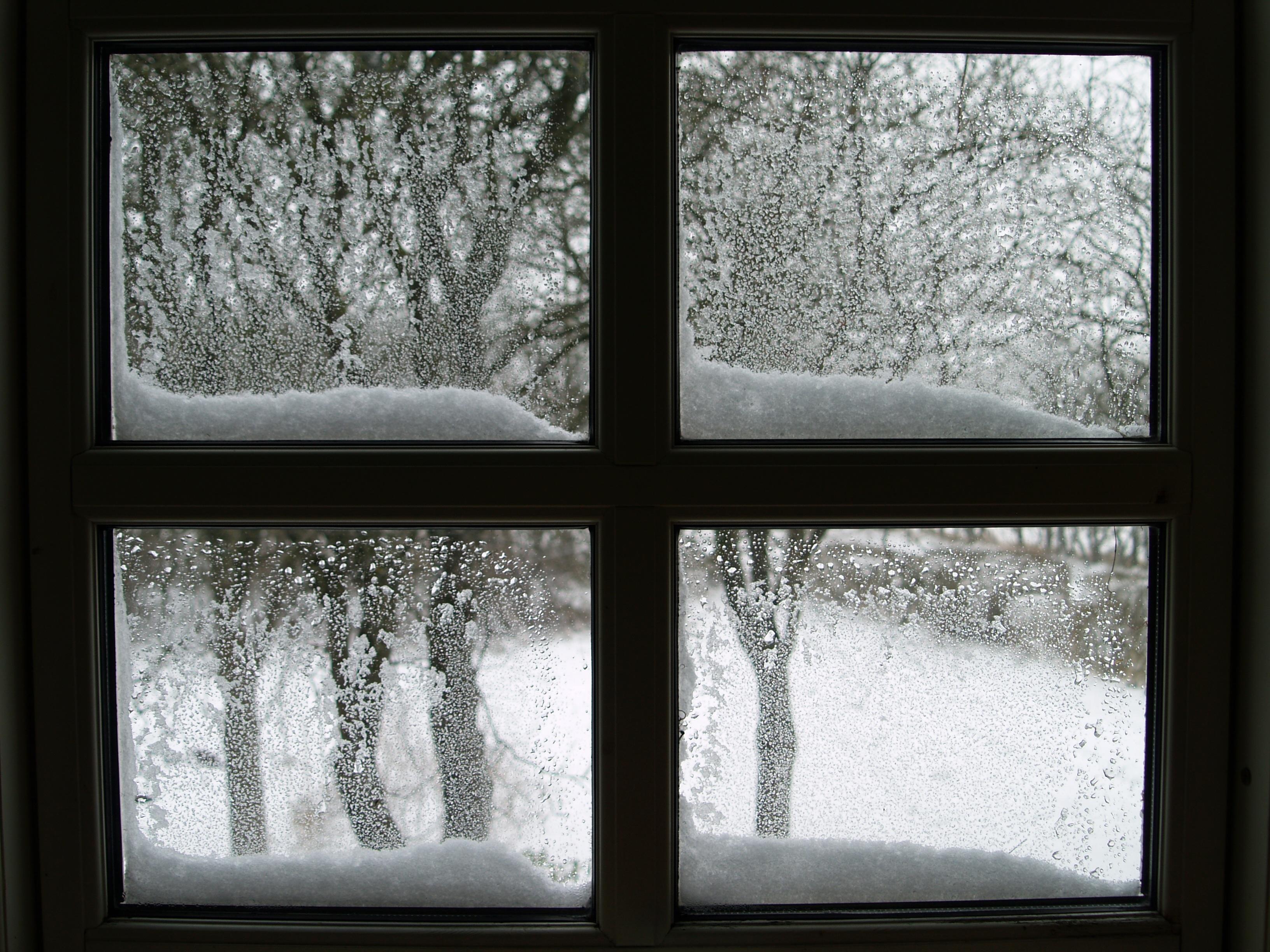 за окном моим снежинки будут рисовать картинки фотограф работает