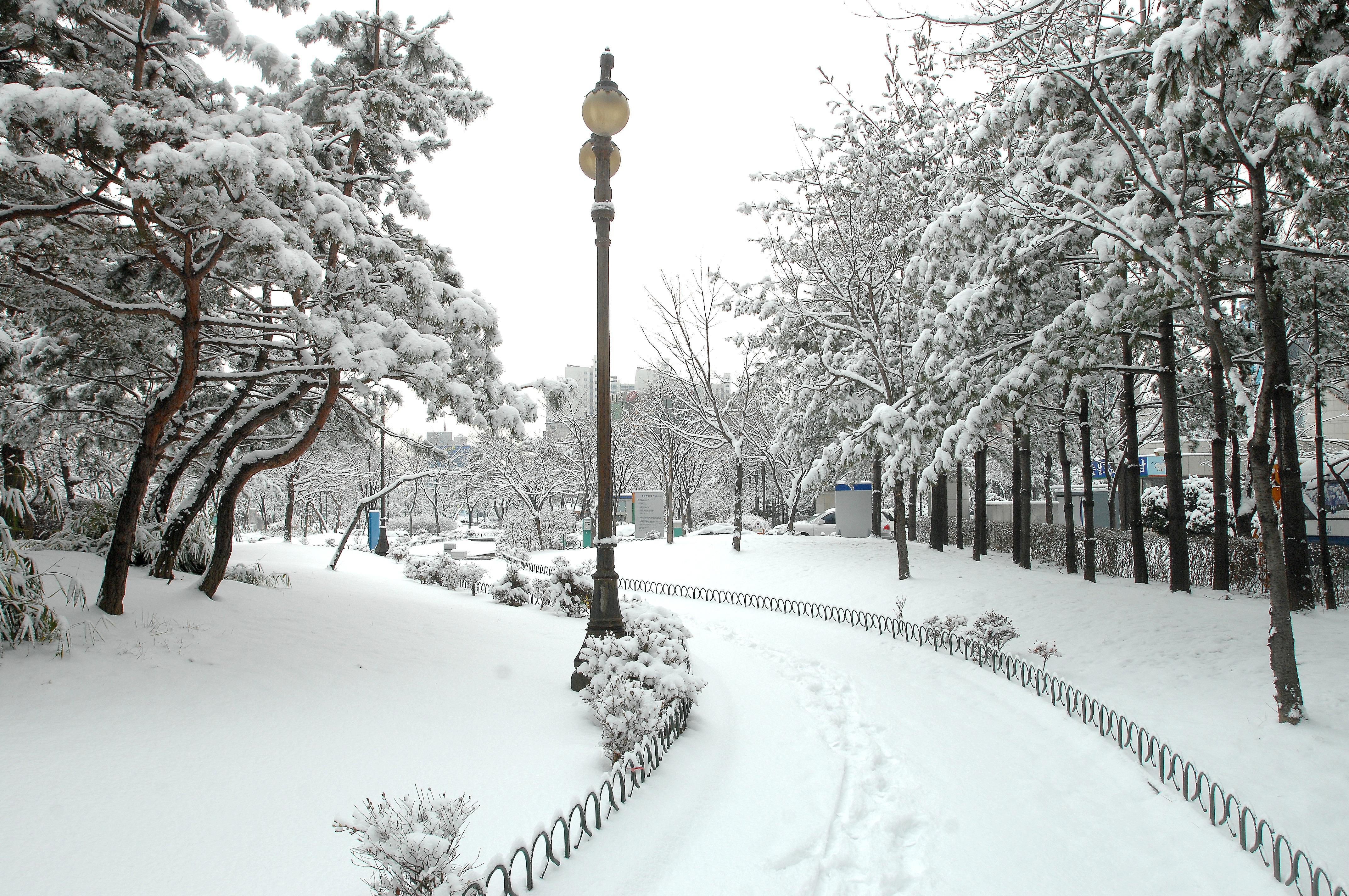 free images snow weather season blizzard freezing