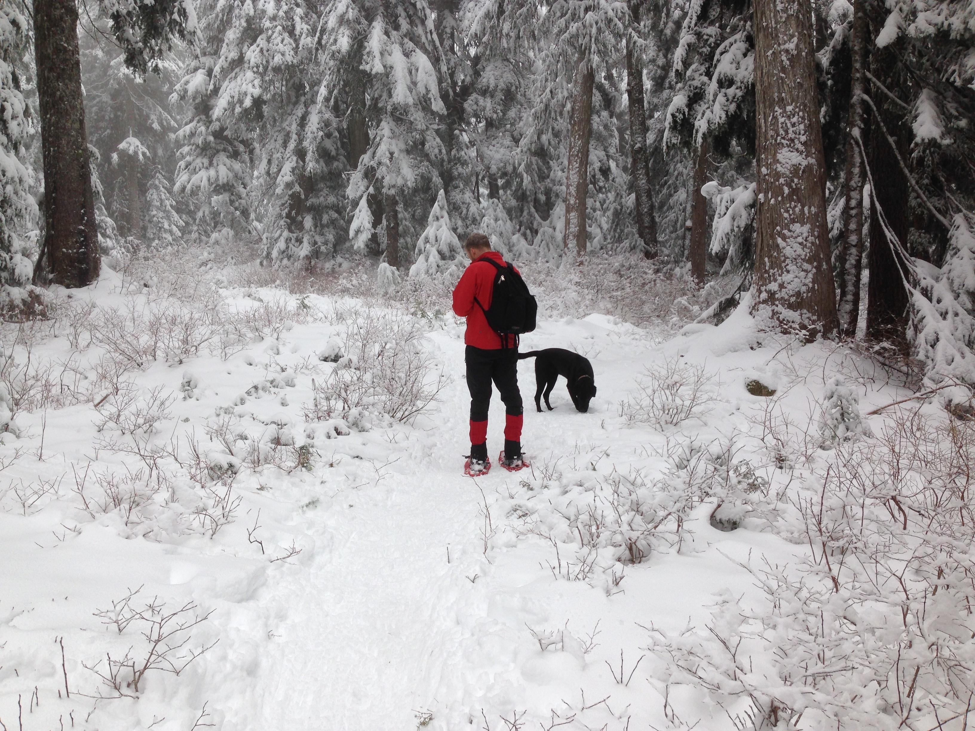 Ебут зимой на снегу, порно длинный девушка фото
