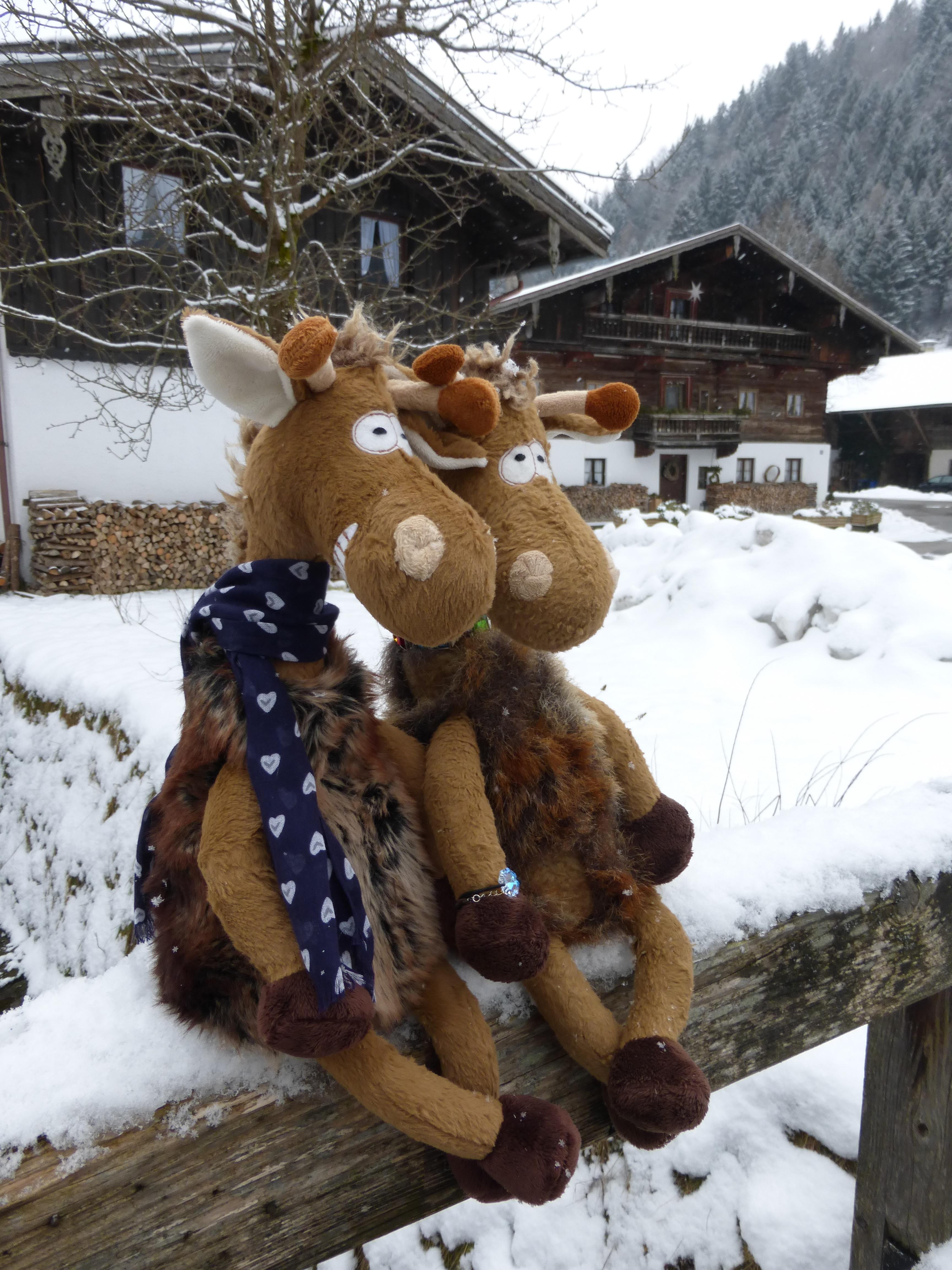 snow winter white deer weather season christmas decoration giraffe snowman reindeer germany bavaria plush chiemgau chiemgauer
