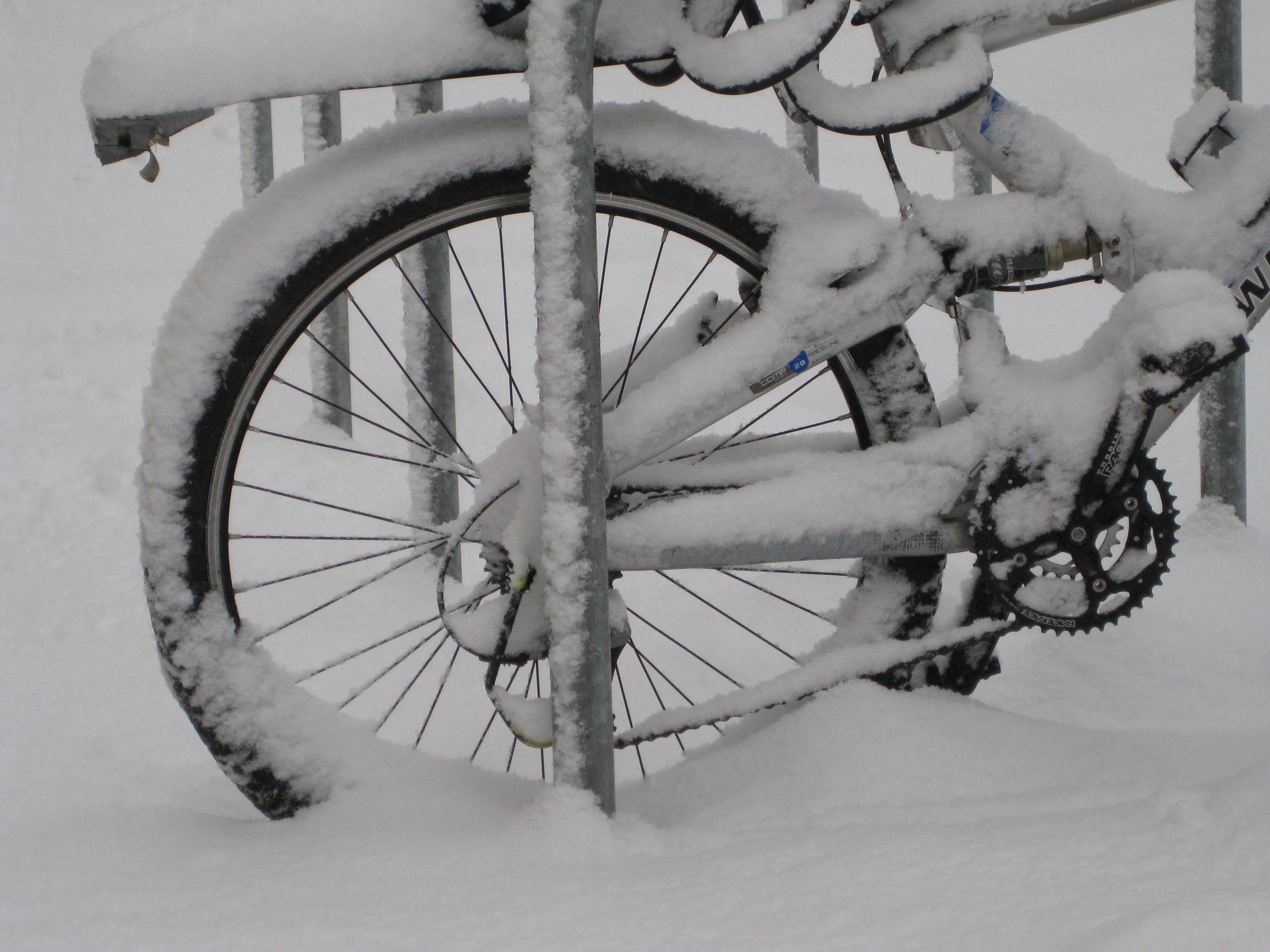 Kostenlose foto  Winter Wei Rad Fahrzeug Wetter
