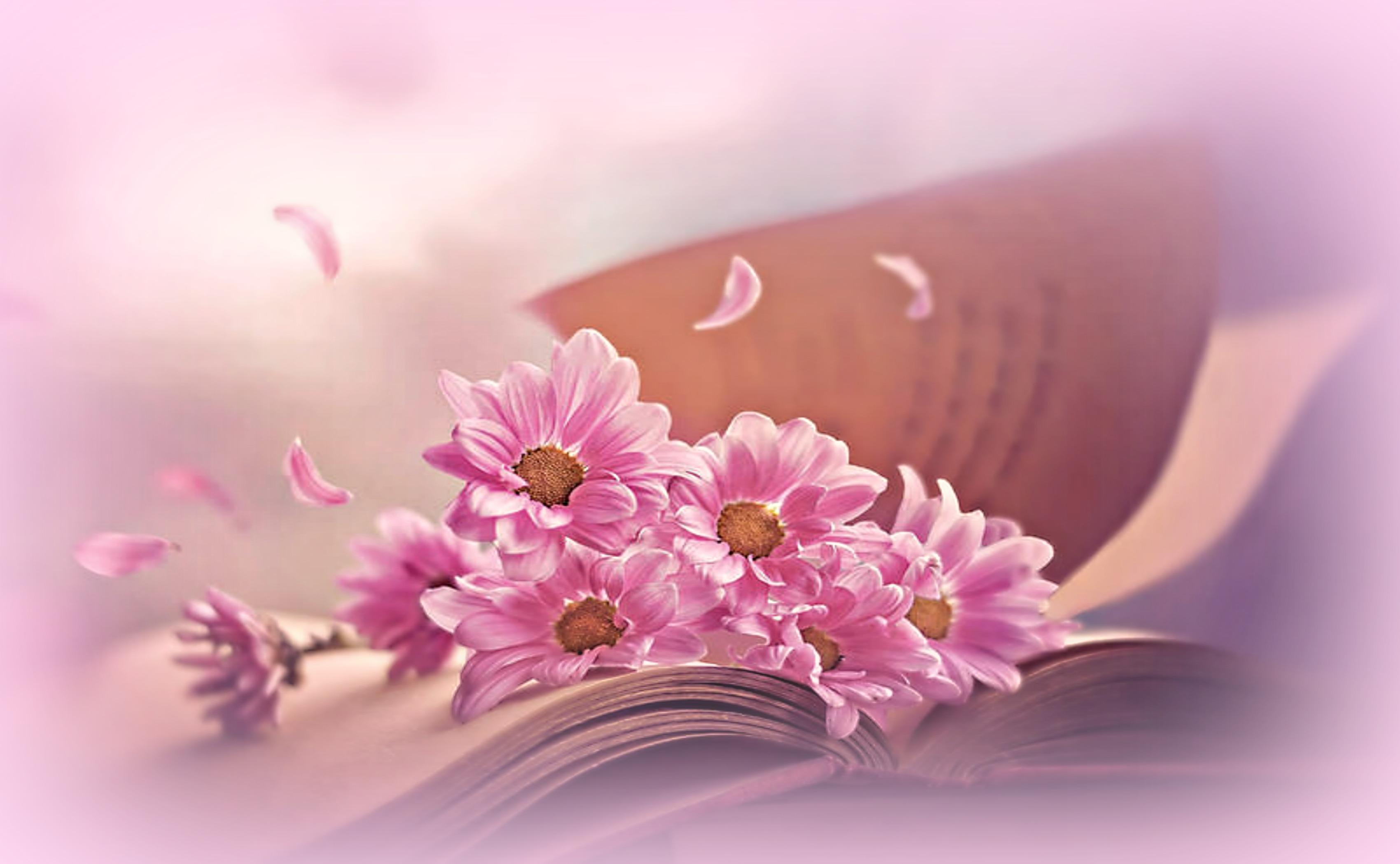 Browsing Bliss Awaits You