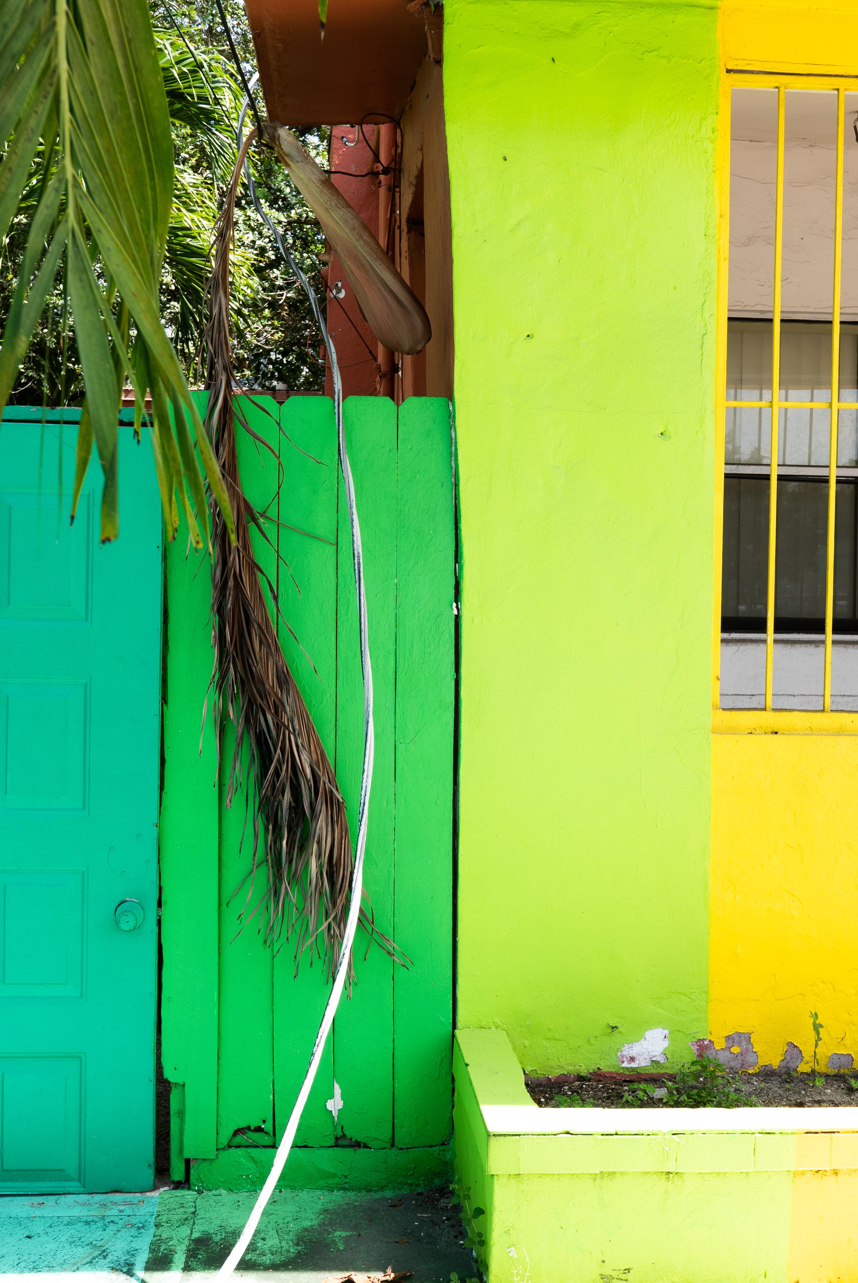 Art Miami Mur Plage