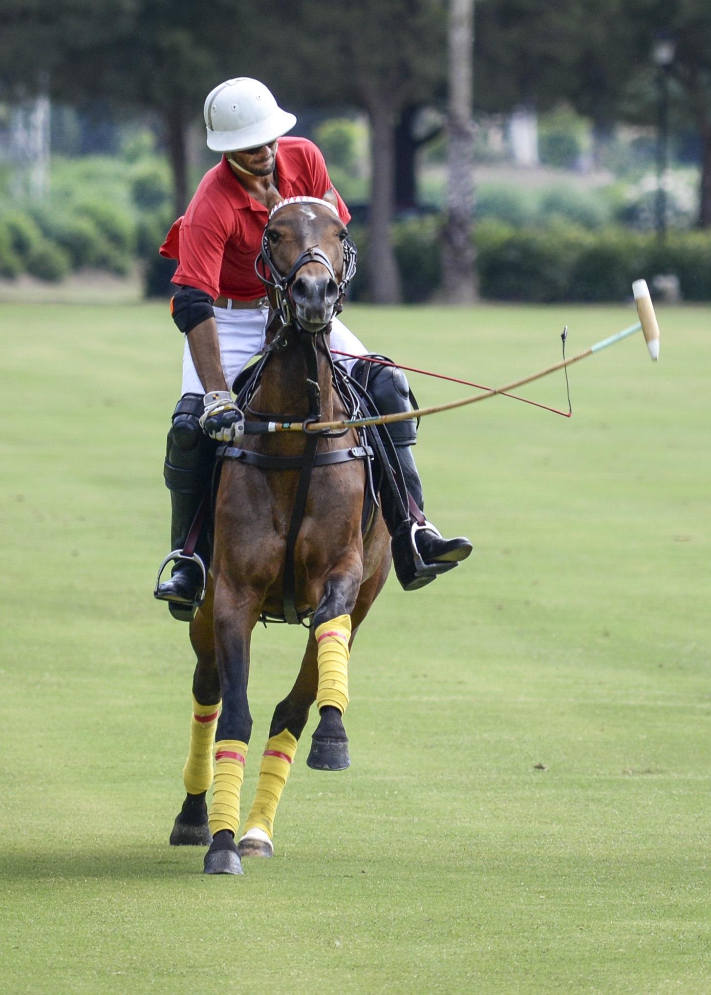Banco de imagens : esporte, jogos, cavalo, jogador, jóquei ...