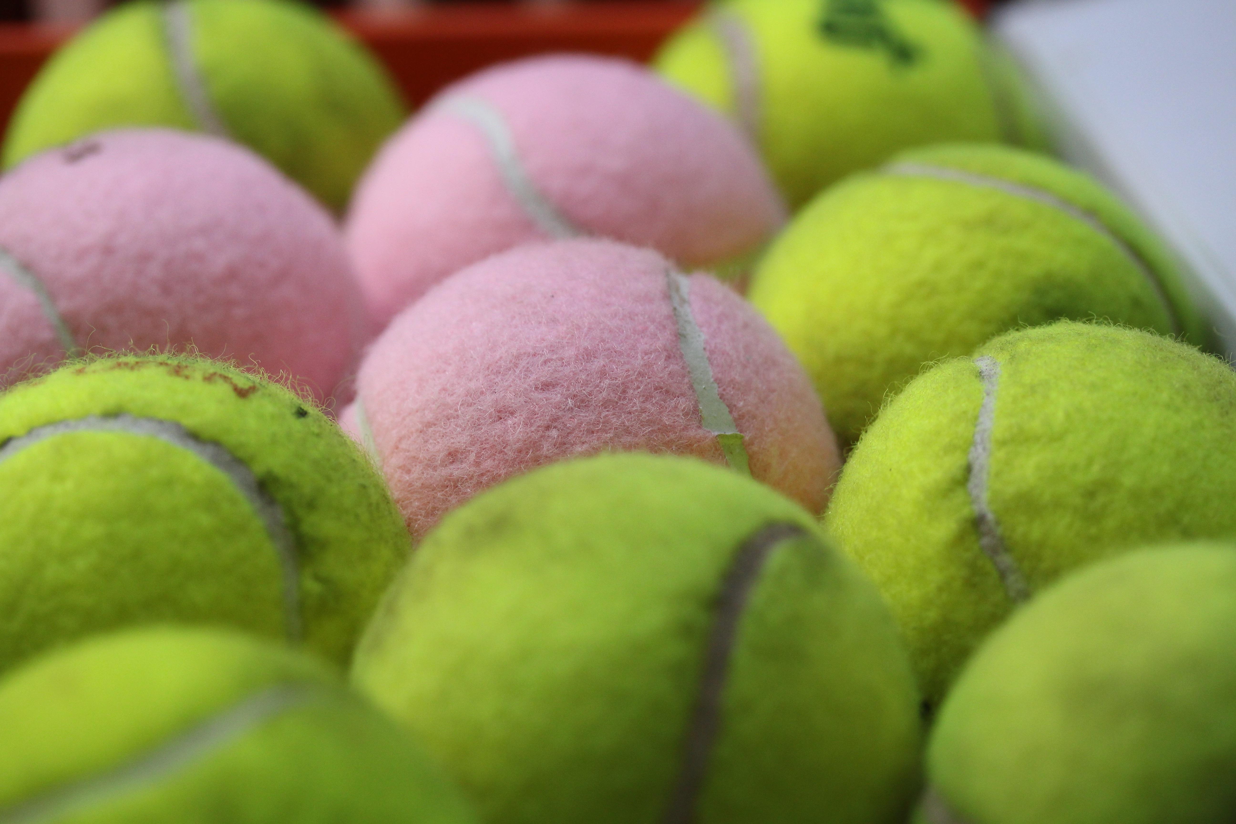 Gambar Hijau Peralatan Olahraga Bola Tenis 5184x3456 864243 Tennis