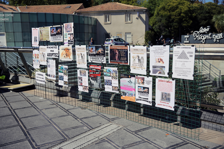 Images gratuites rue ville mur l 39 europe action art - Piscine place de l europe montpellier ...