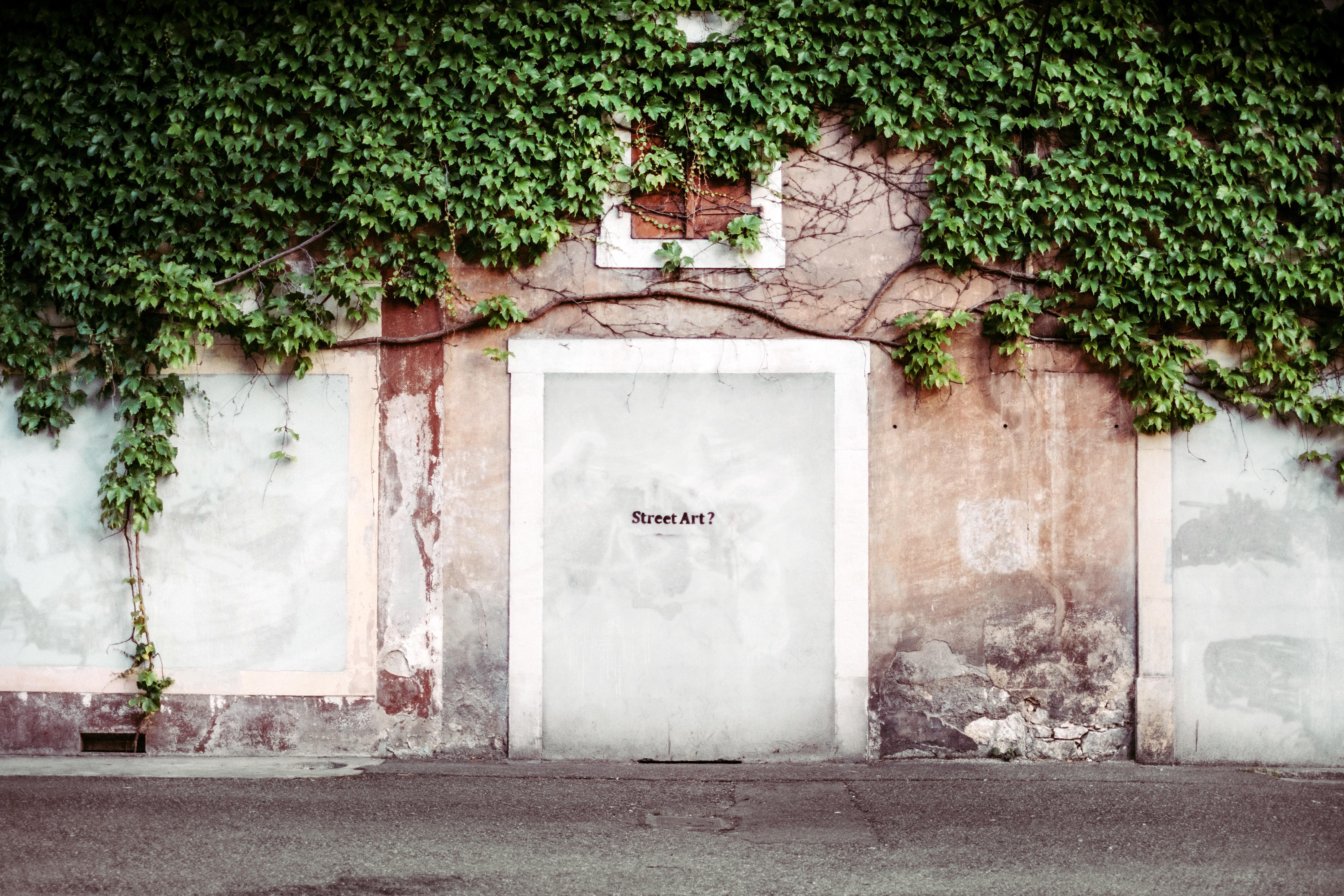 Straße Haus Textur Fenster Zuhause Mauer Grün Farbe Fassade Tür  Straßenkunst Foto Stadtgebiet