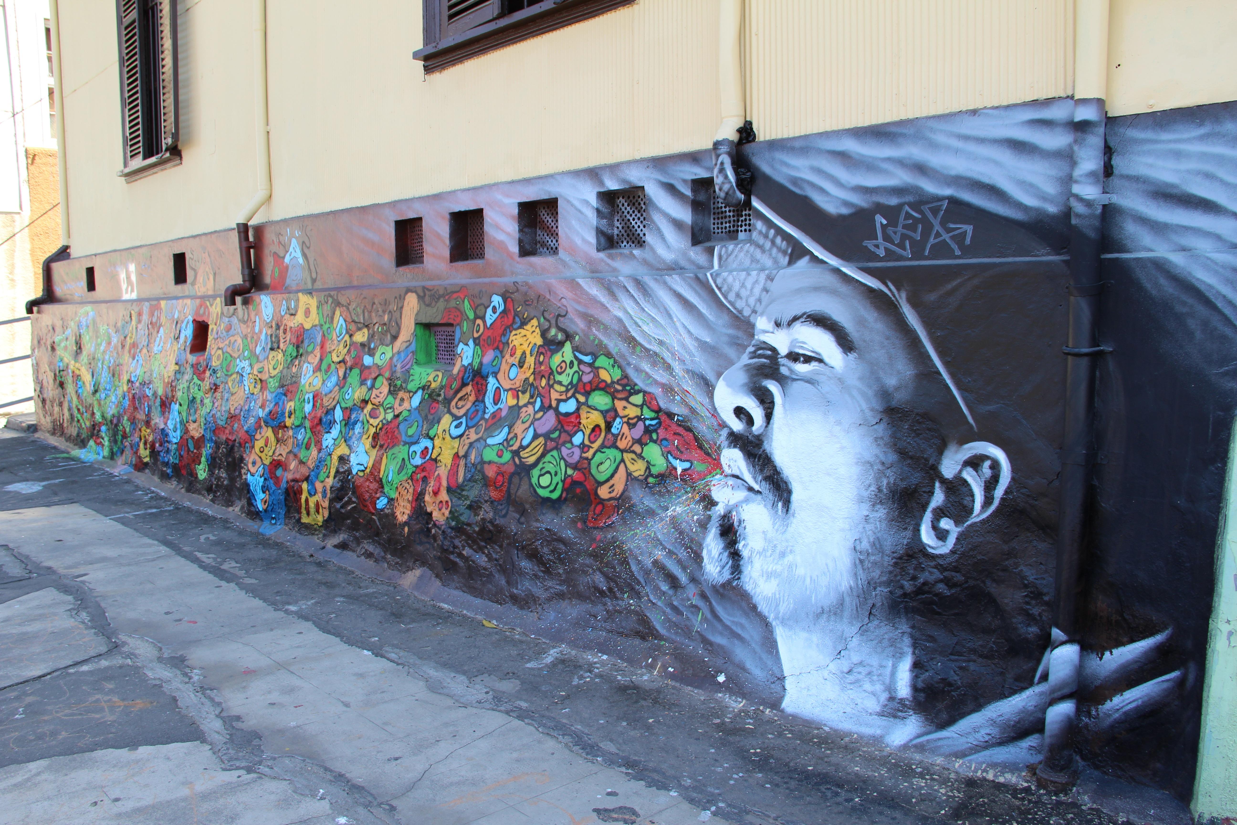 Murales Decorativos Valparaiso