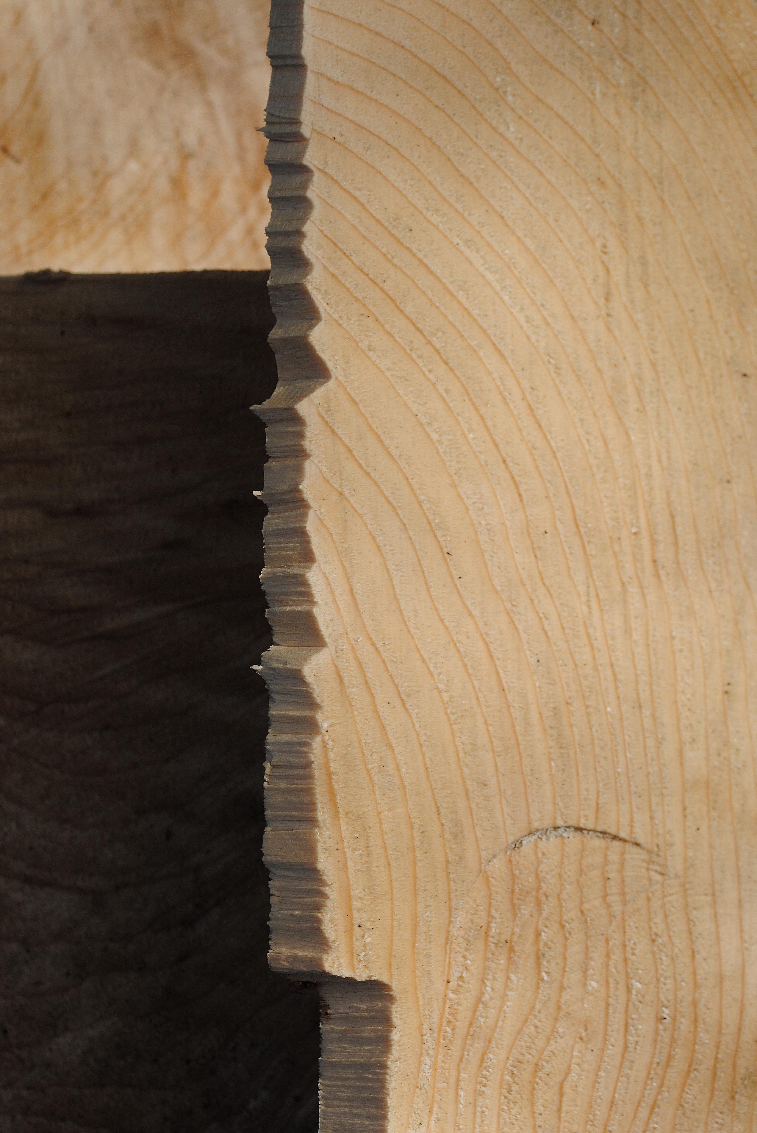 무료 이미지 : 구조, 벽, 부서진, 재목, 견목, 조각, 연륜, 합판 ...
