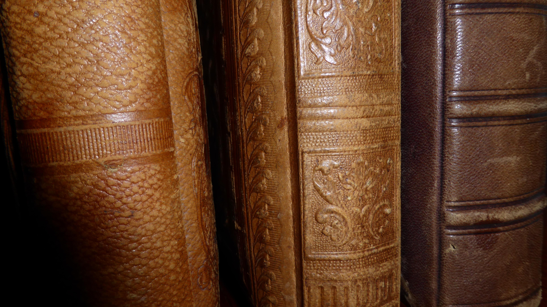 Estructura madera cuero antiguo marr n mueble libro viejo espina de cerca libros tallado anticuario anticuario cubiertas