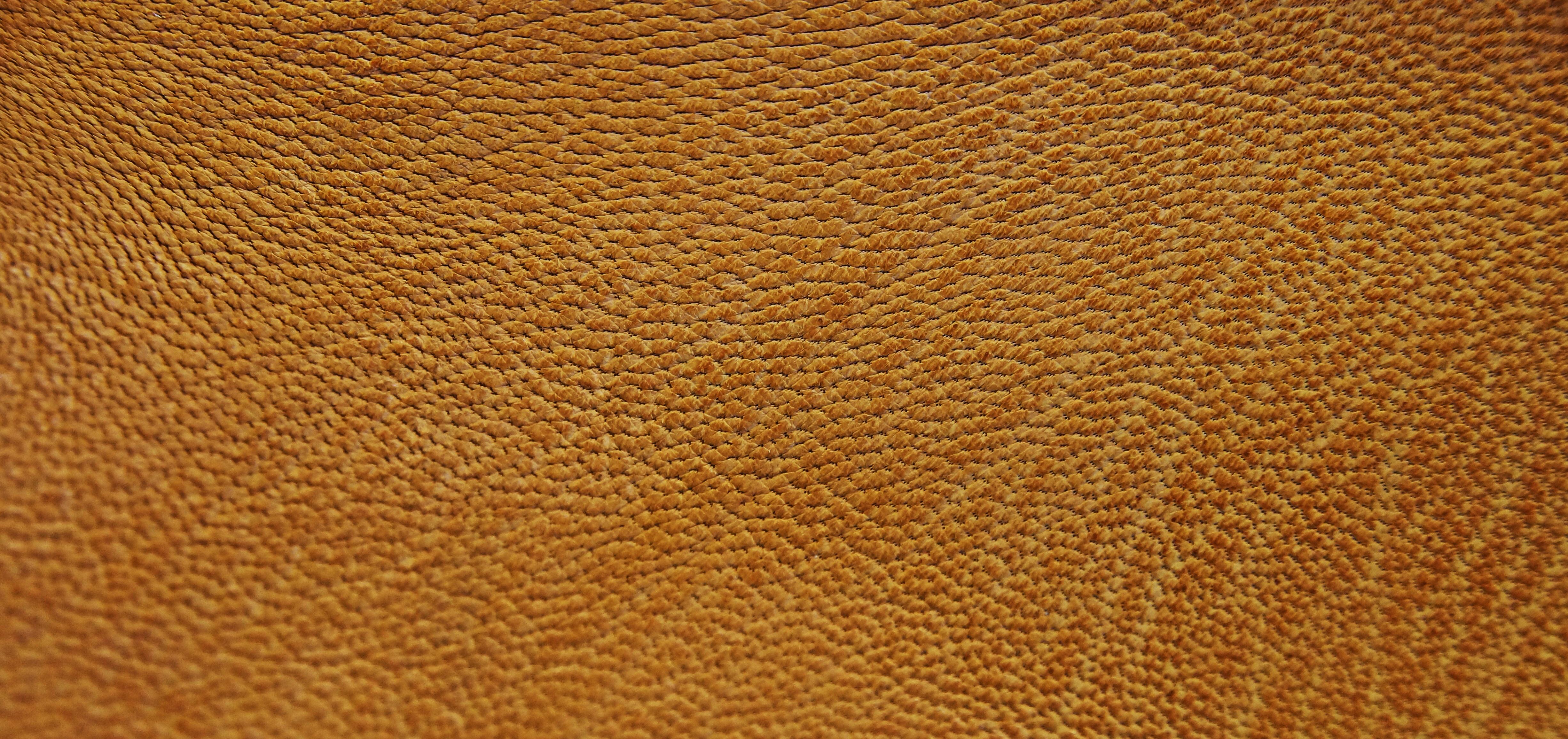 Free Images Structure Wood Texture Floor Fur Orange