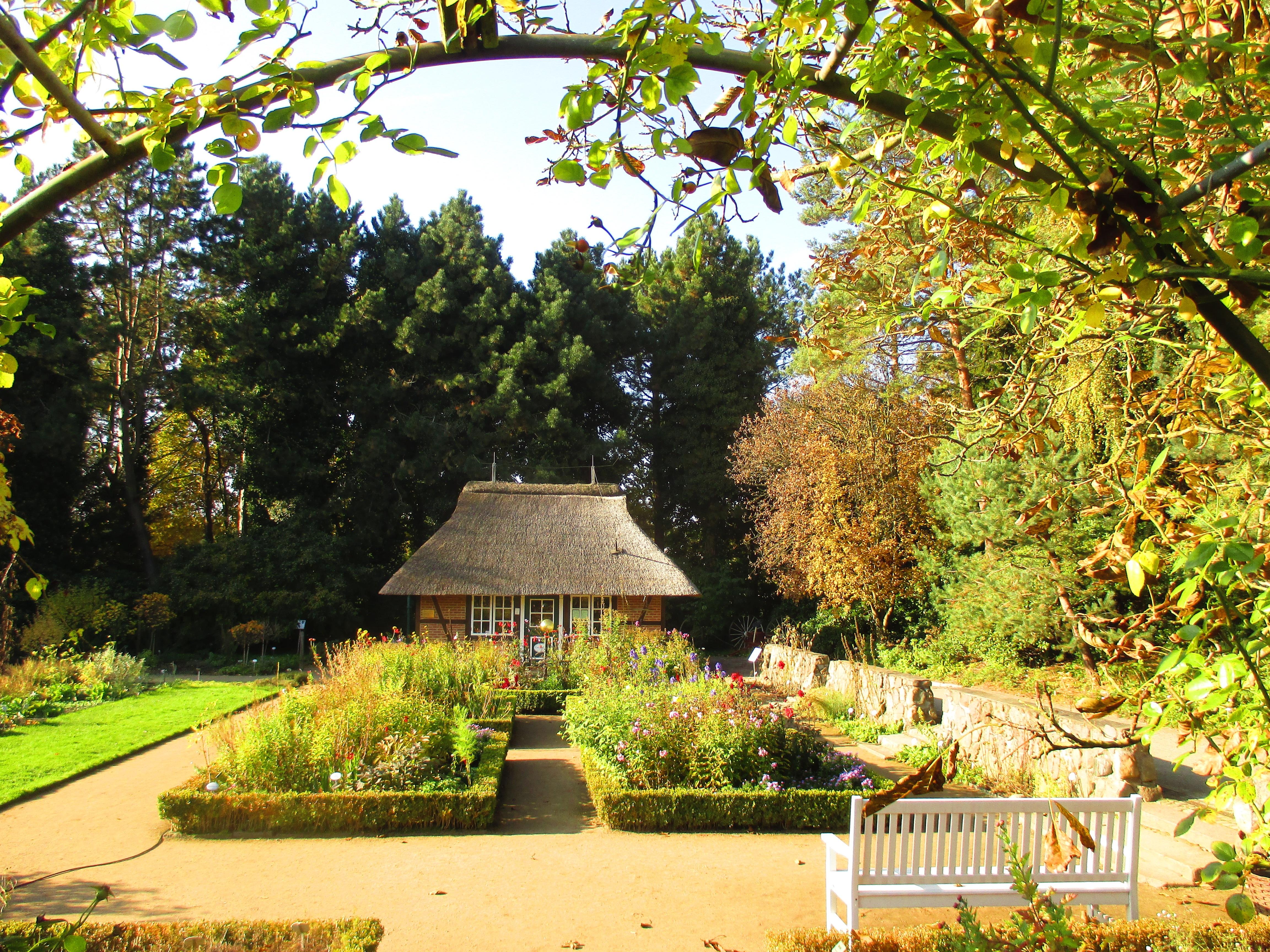 Fotos gratis sol c sped flor casa caba a oto o parque patio interior propiedad - Ley propiedad horizontal patio interior ...