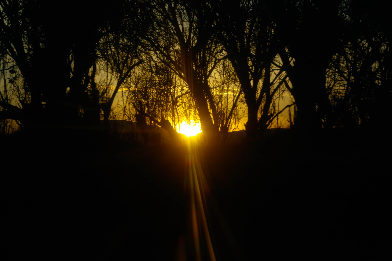 солнце и мрак картинки изменам