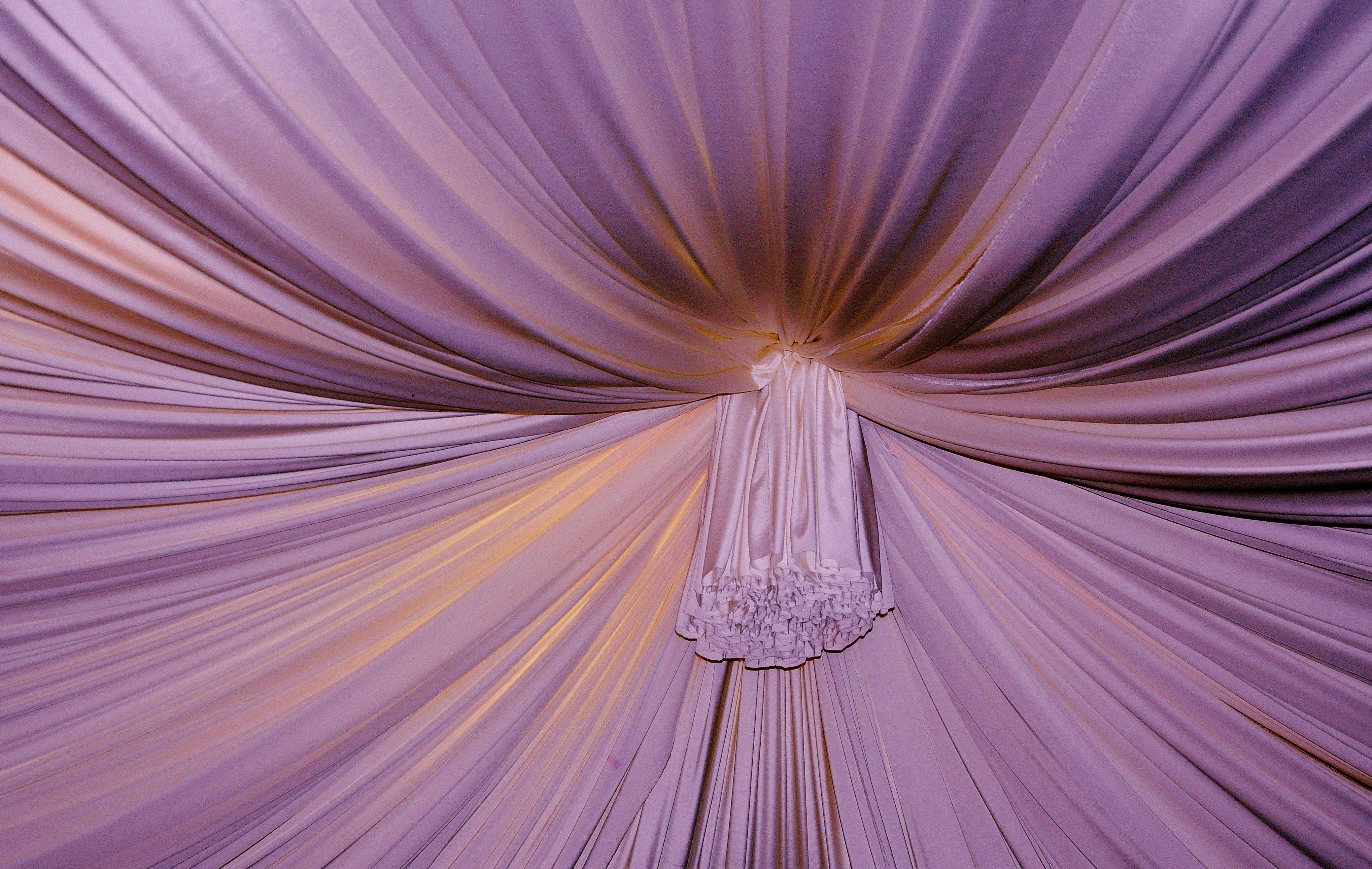 Free Images Sunlight Flower Purple Petal Color Hanging Pink