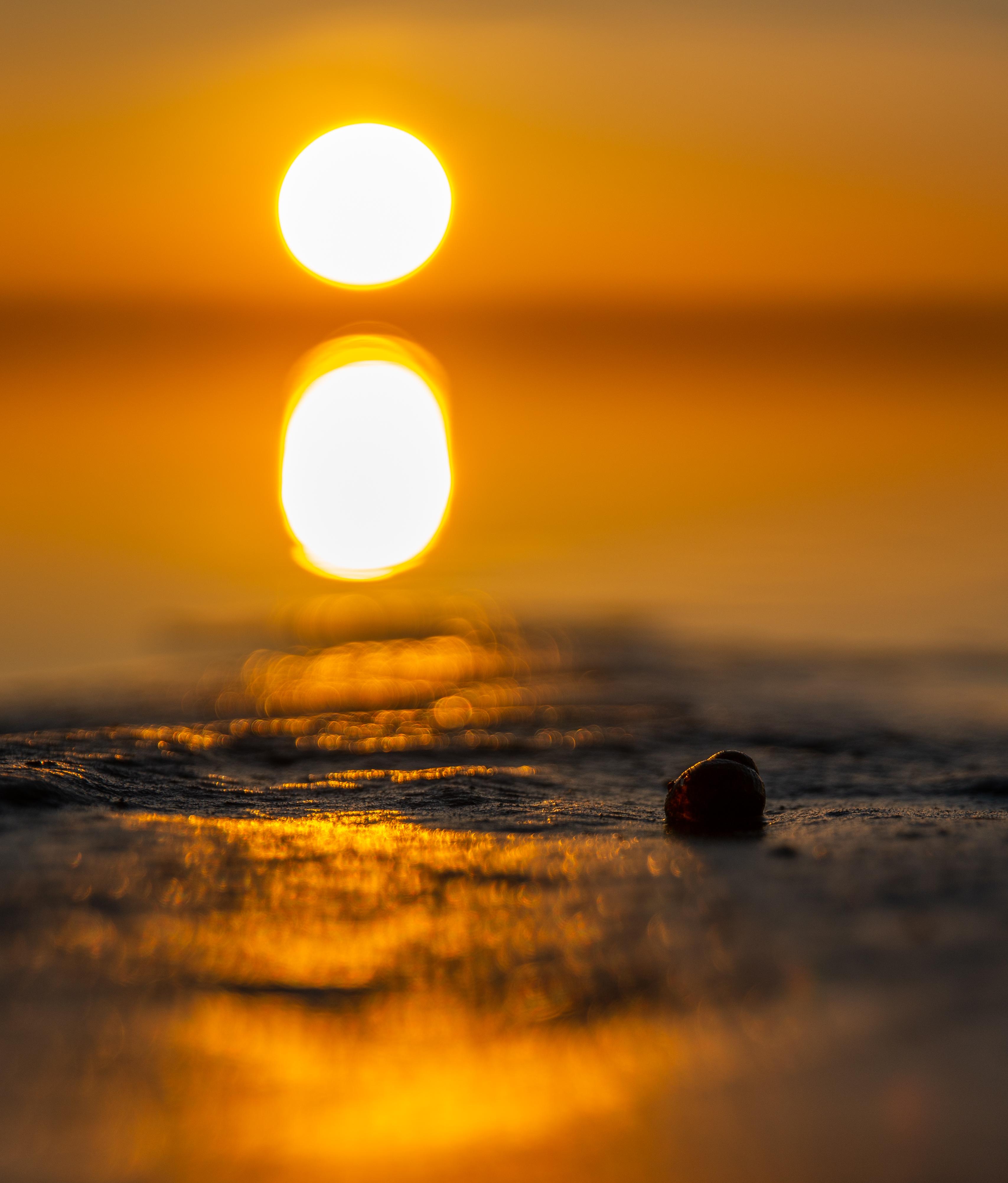 Free images sunset water shell sun horizon sunrise sky calm sunset water shell sun horizon sunrise sky calm atmosphere sea atmosphere of earth morning afterglow daytime altavistaventures Gallery