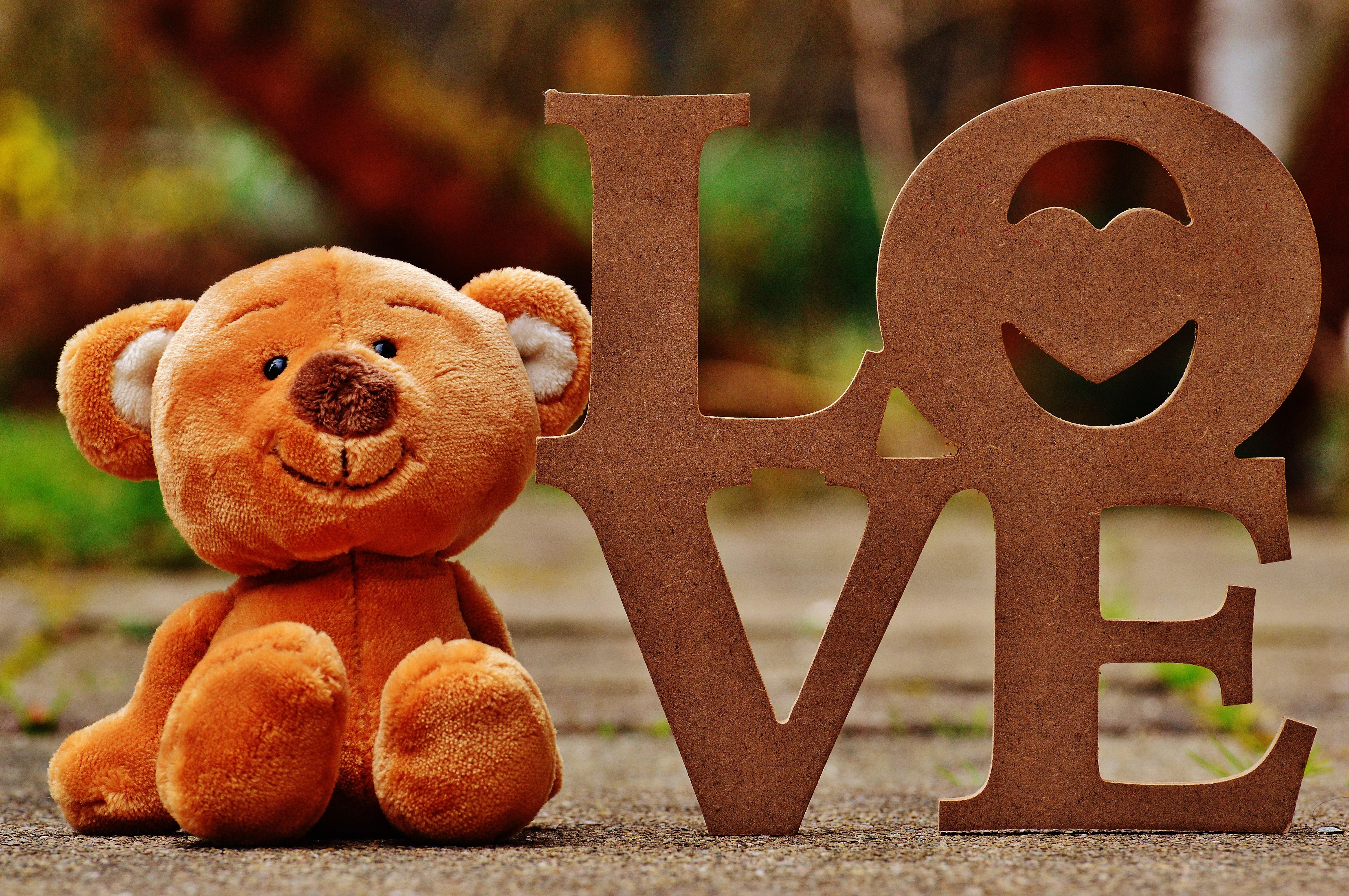 sweet animal cute bear love toy brown bear teddy bear children toys funny  plush stuffed animal