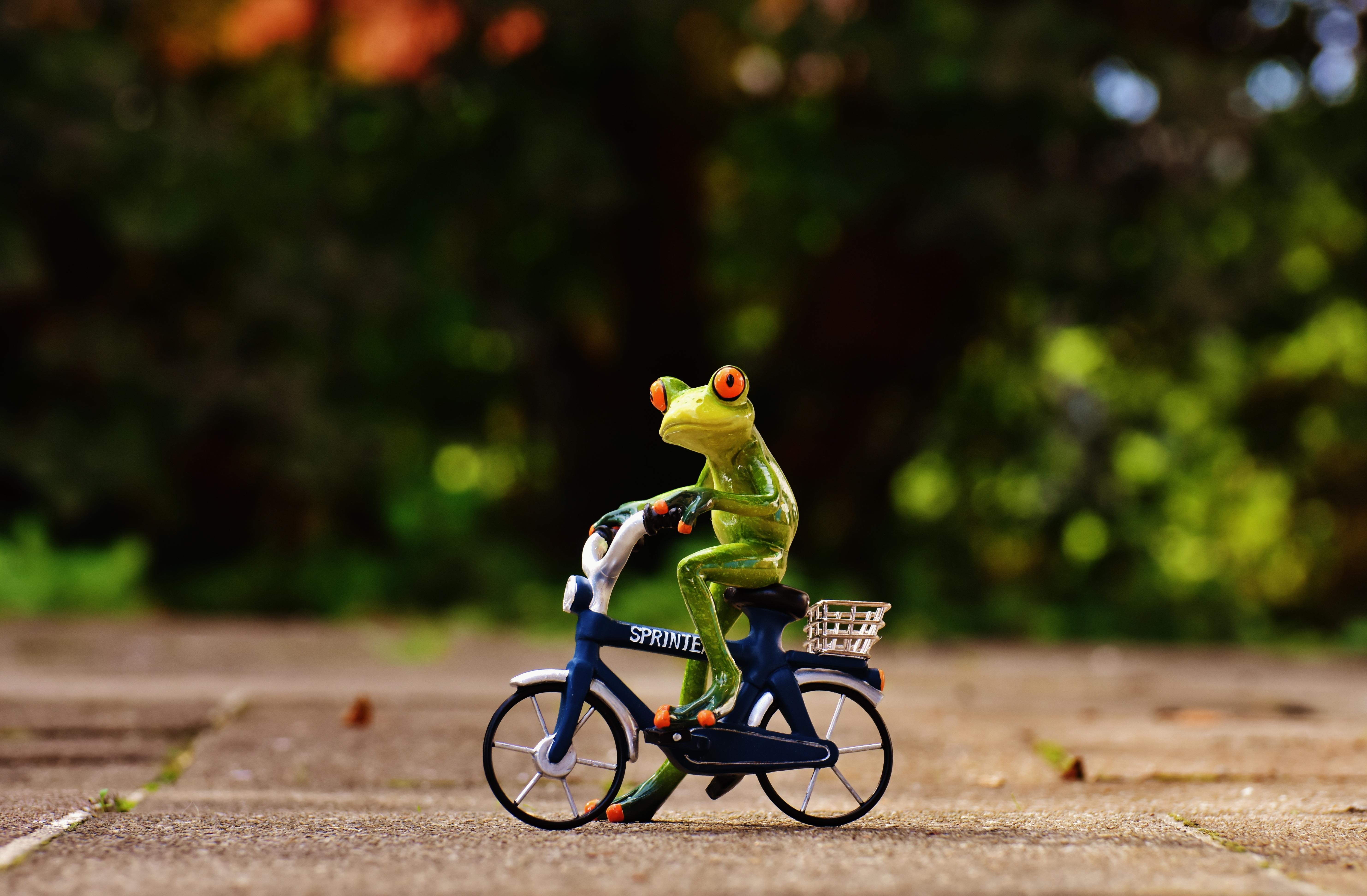 Прикольные картинки велосипед