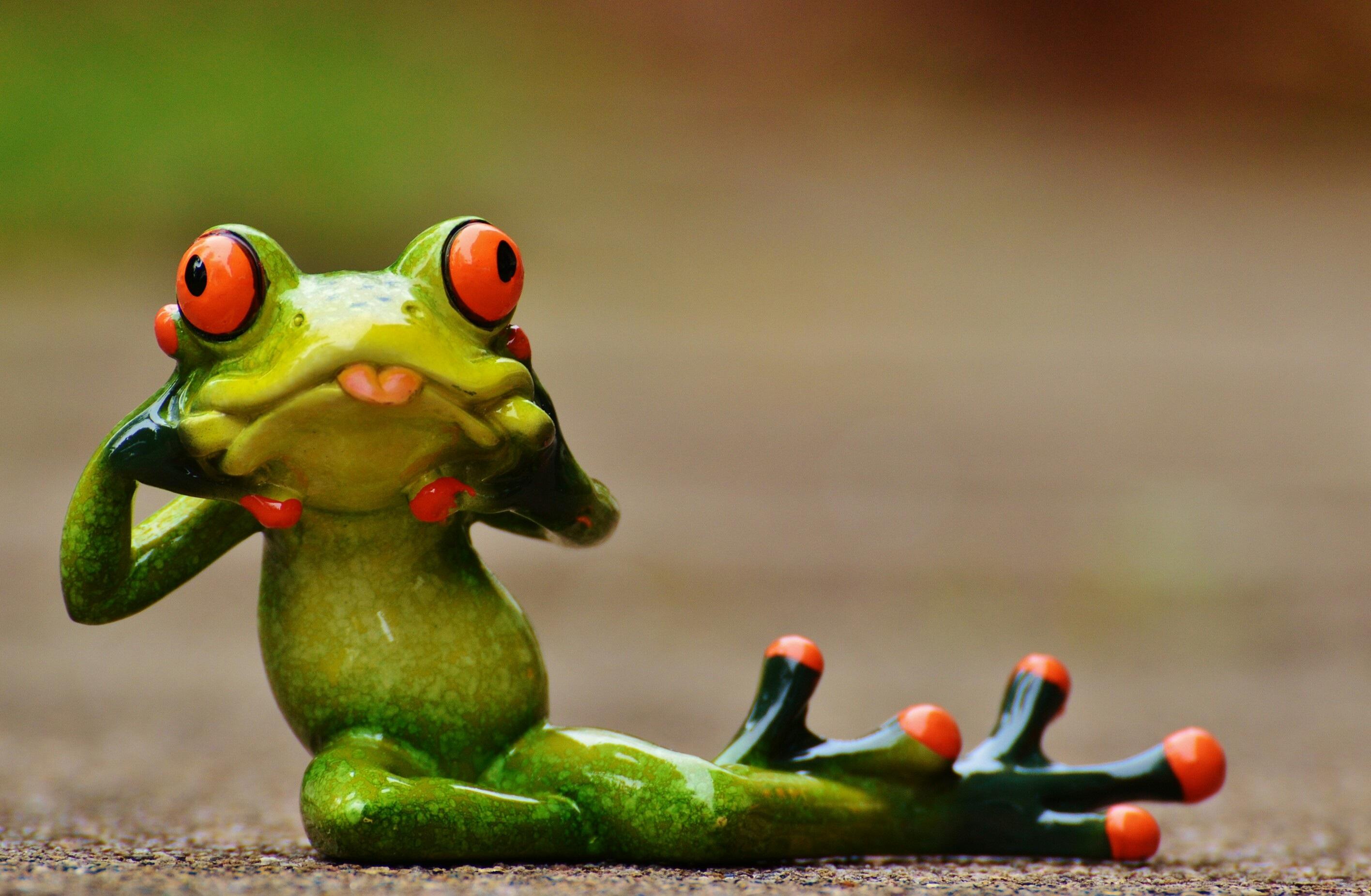 расскажите, картинки красивые с лягушками так сложно