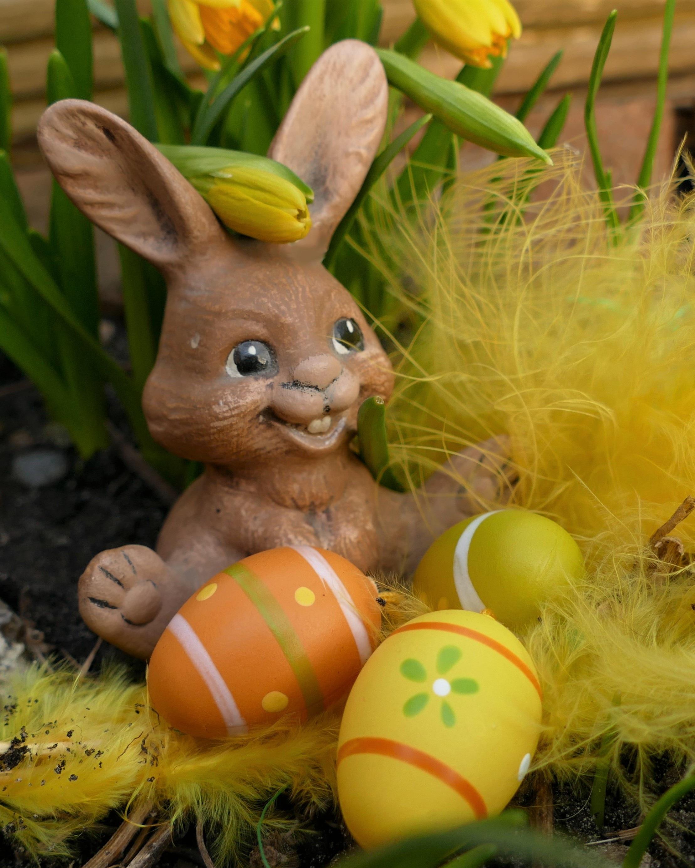 Картинки прикольного пасхального кролика
