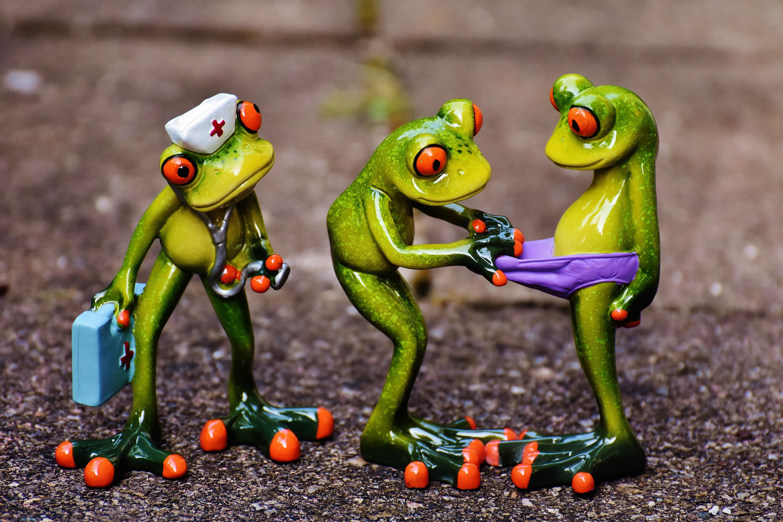 Картинки смешной лягушонок
