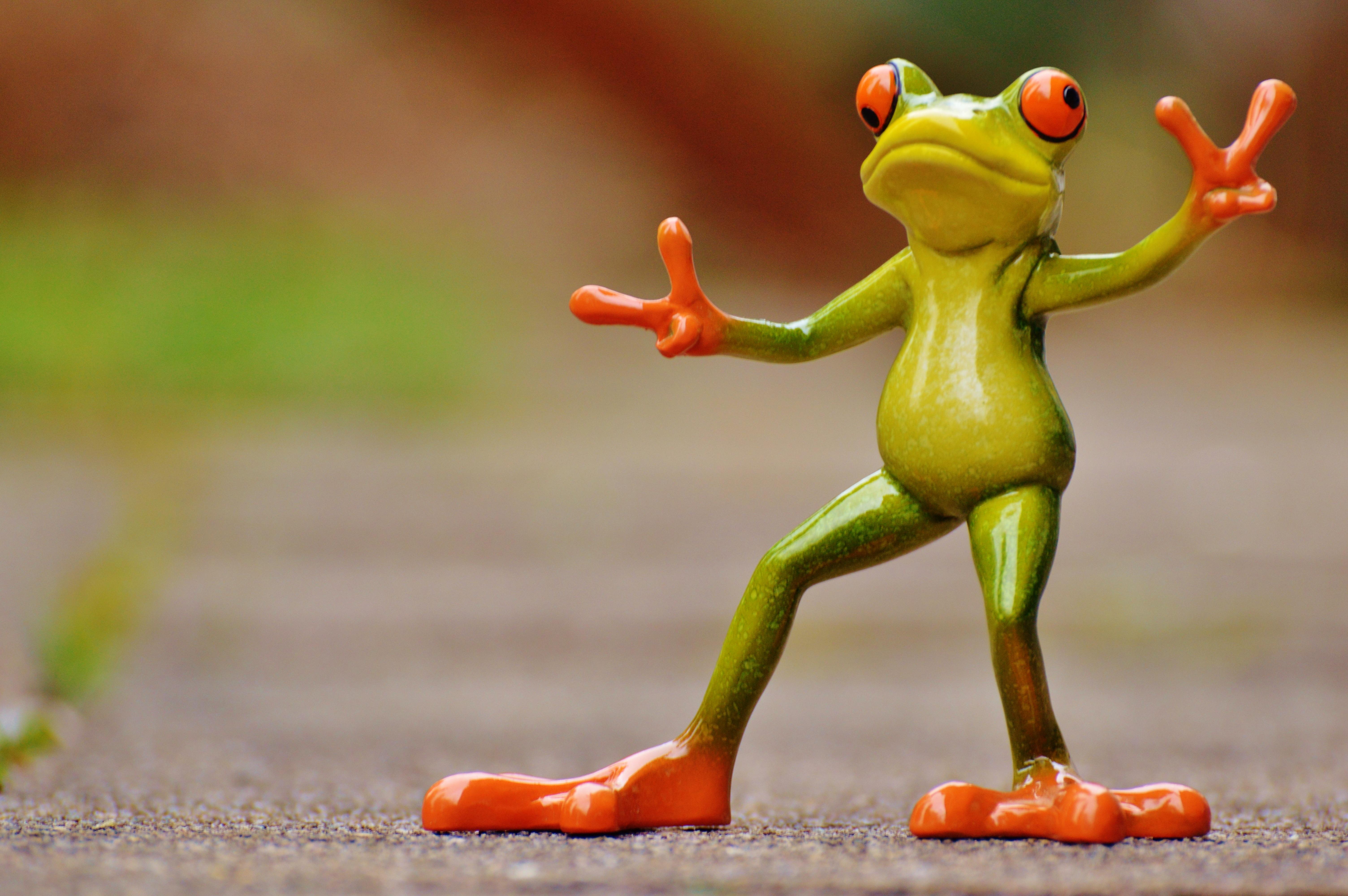 Днем, картинка с лягушкой смешная