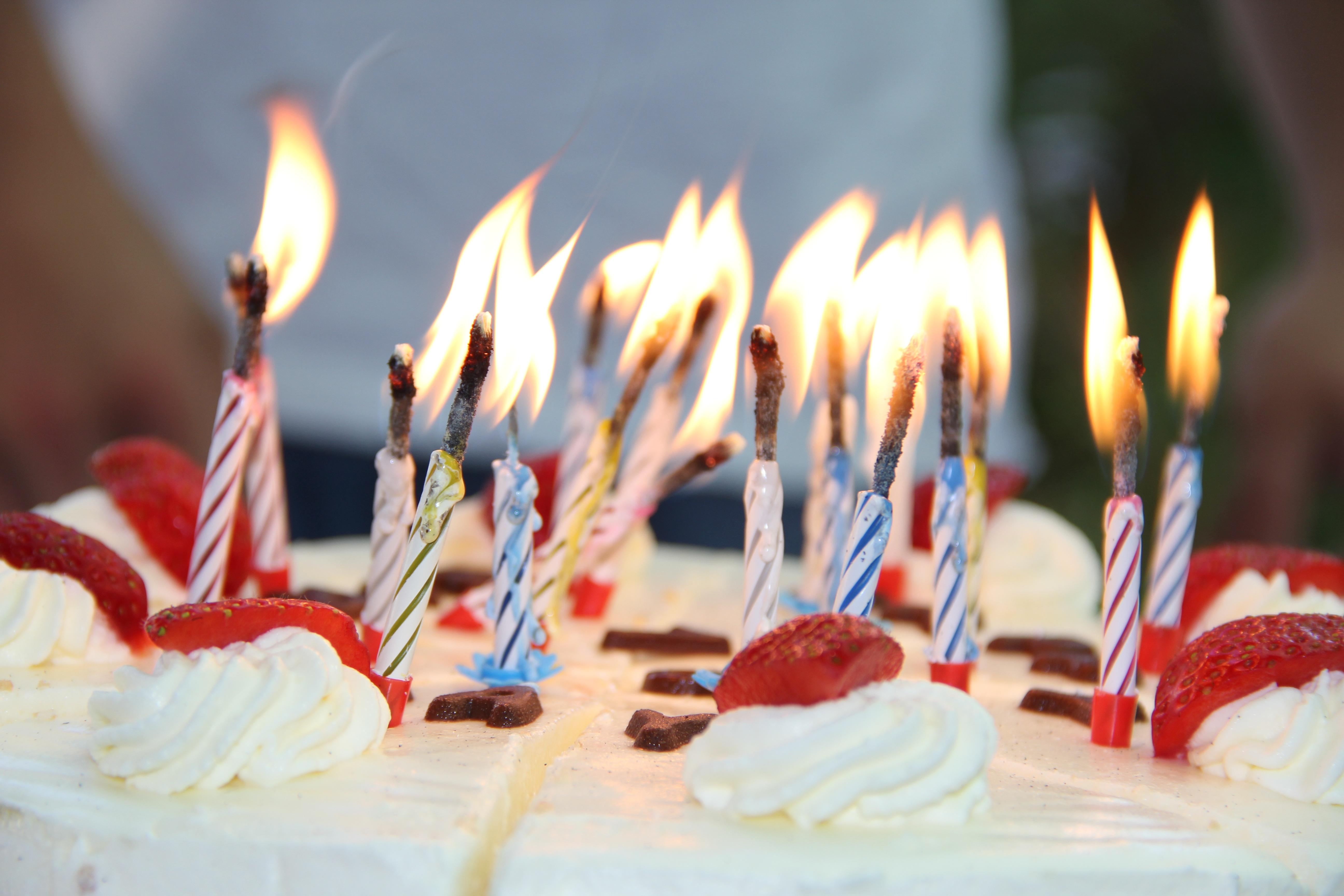 Sweet Flower Celebration Food Red Christmas Dessert Eat Cream Cake Baked Birthday Bake Festival Candles
