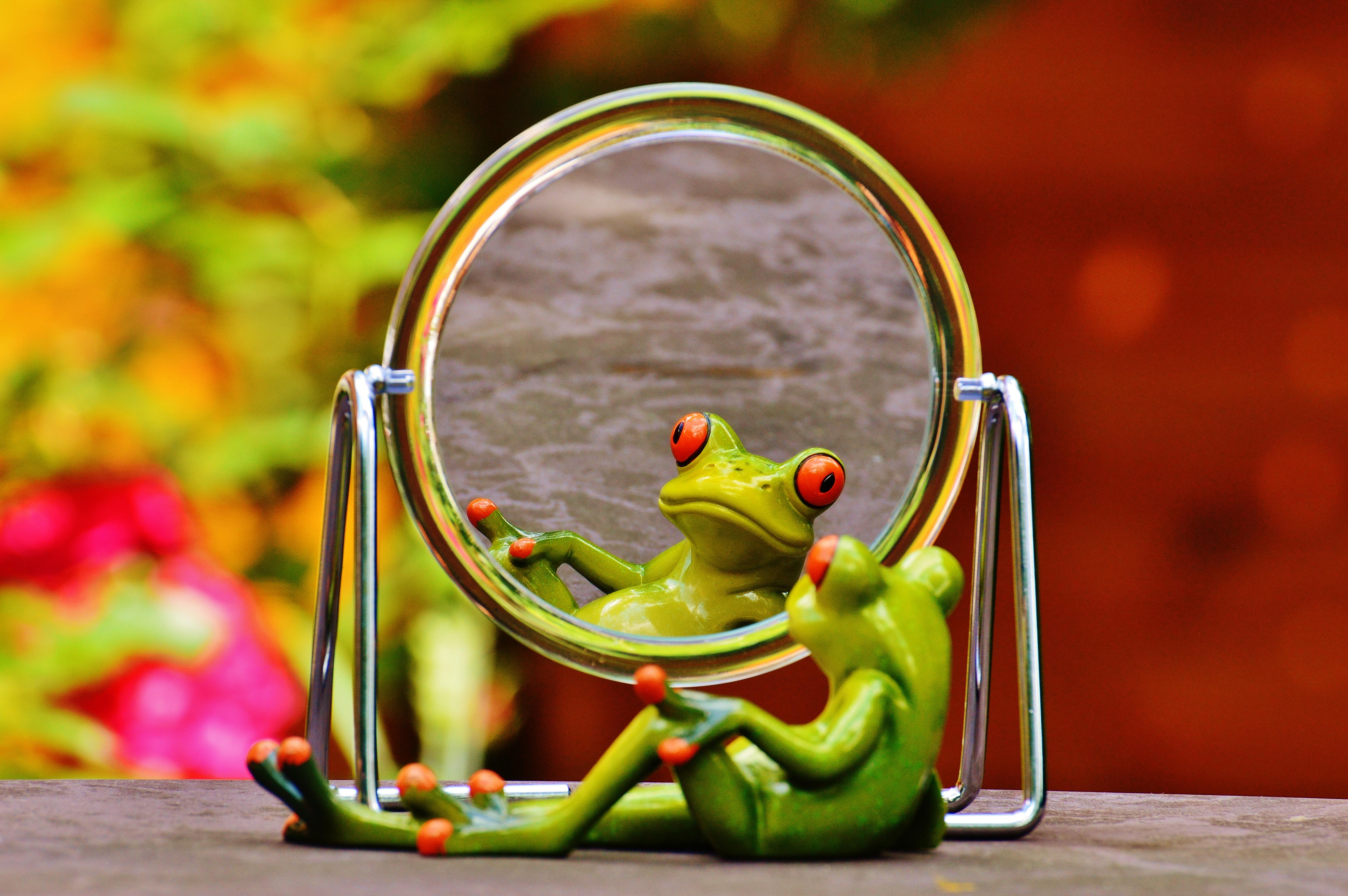Смешные зеркала картинки, мозаики своими