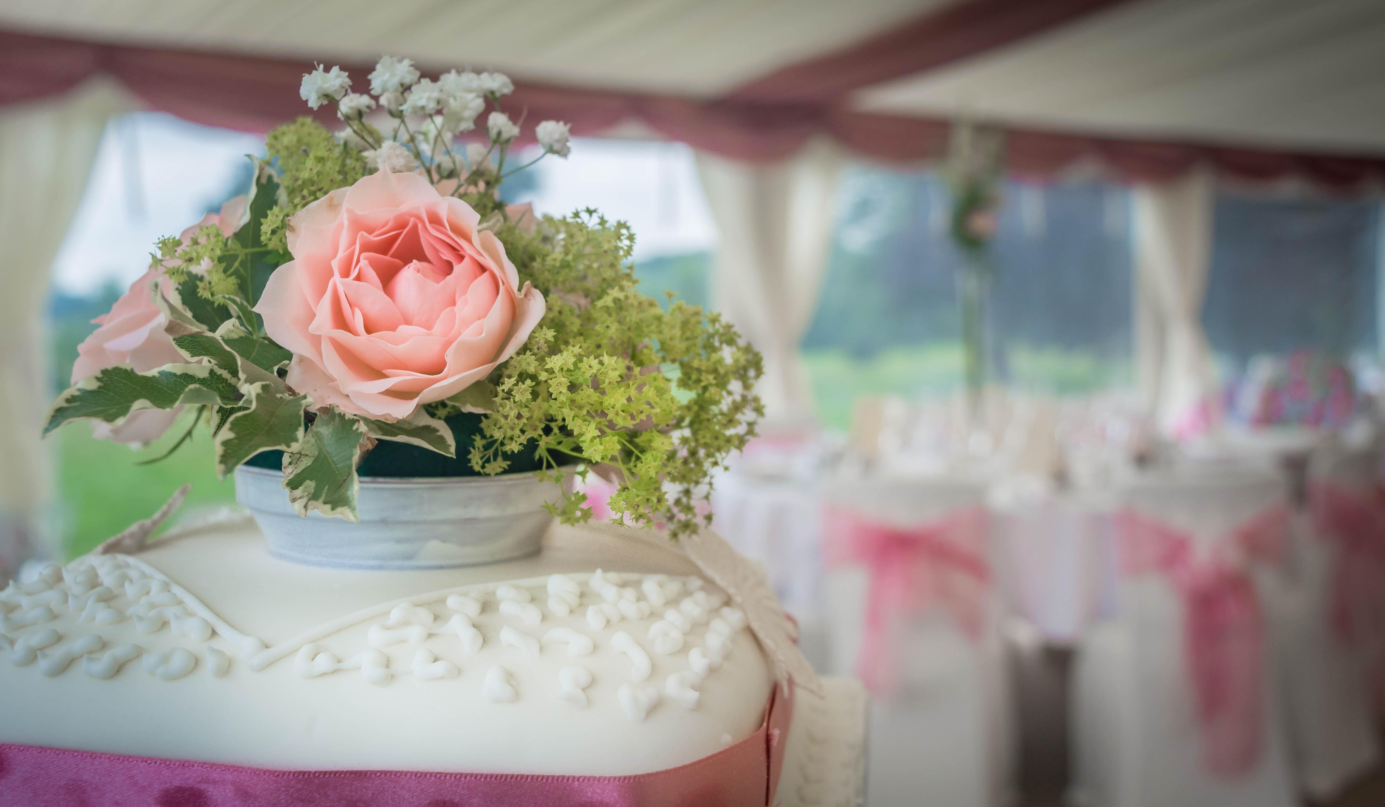 Images Gratuites Doux Fleur Aliments Rose Dessert Delicieux